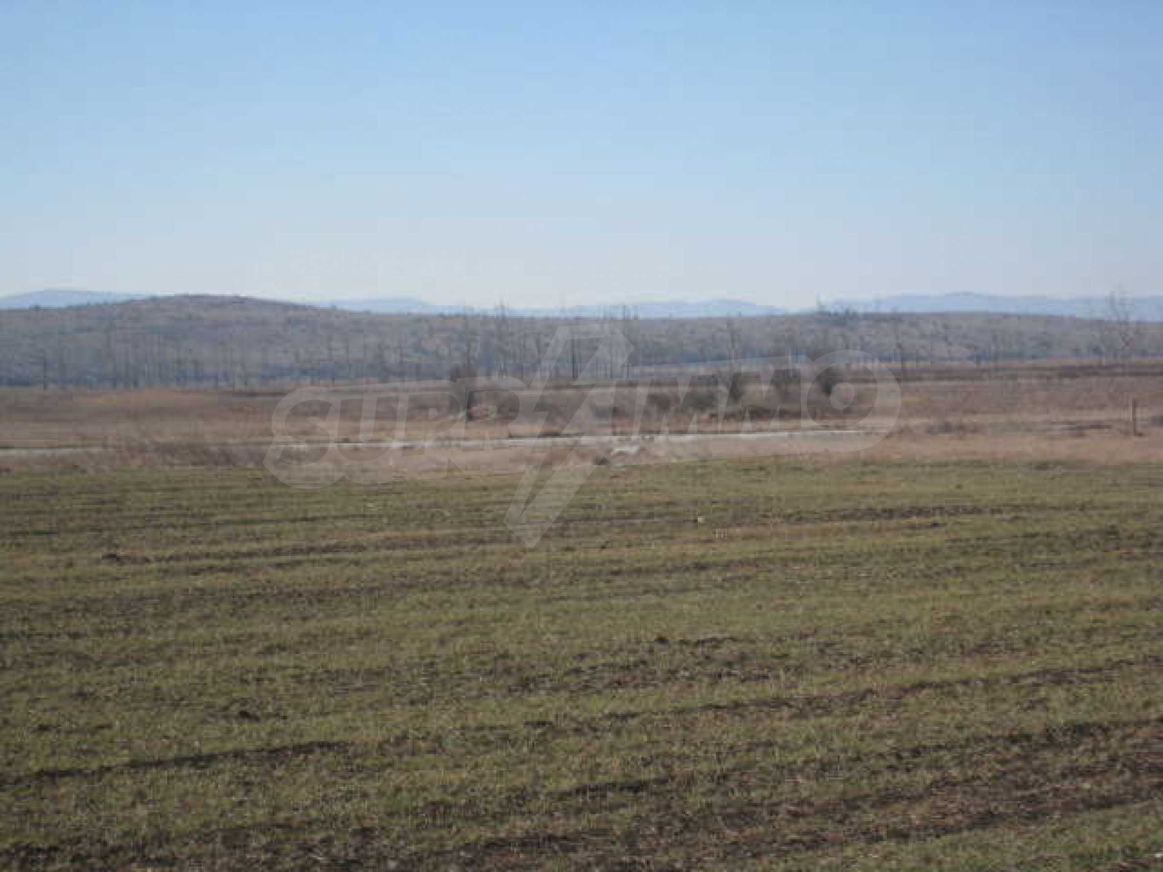 Well-sized plot of agricultural land 10