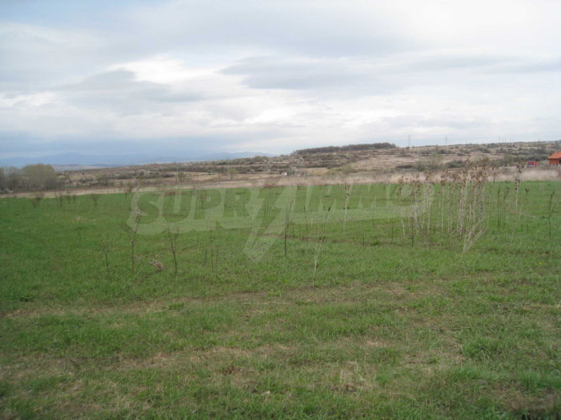 Large property featuring five plots