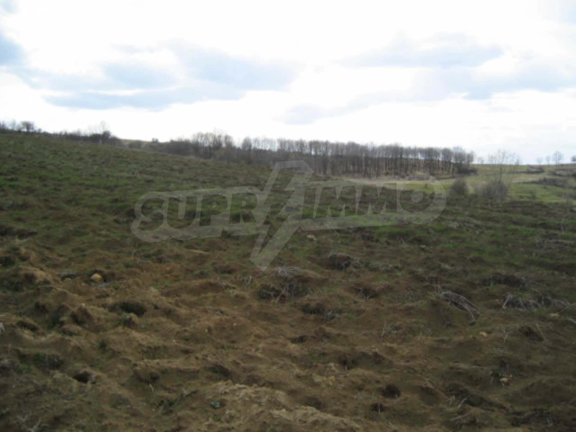 Three neighbouring plots of land in Rudartsi 6
