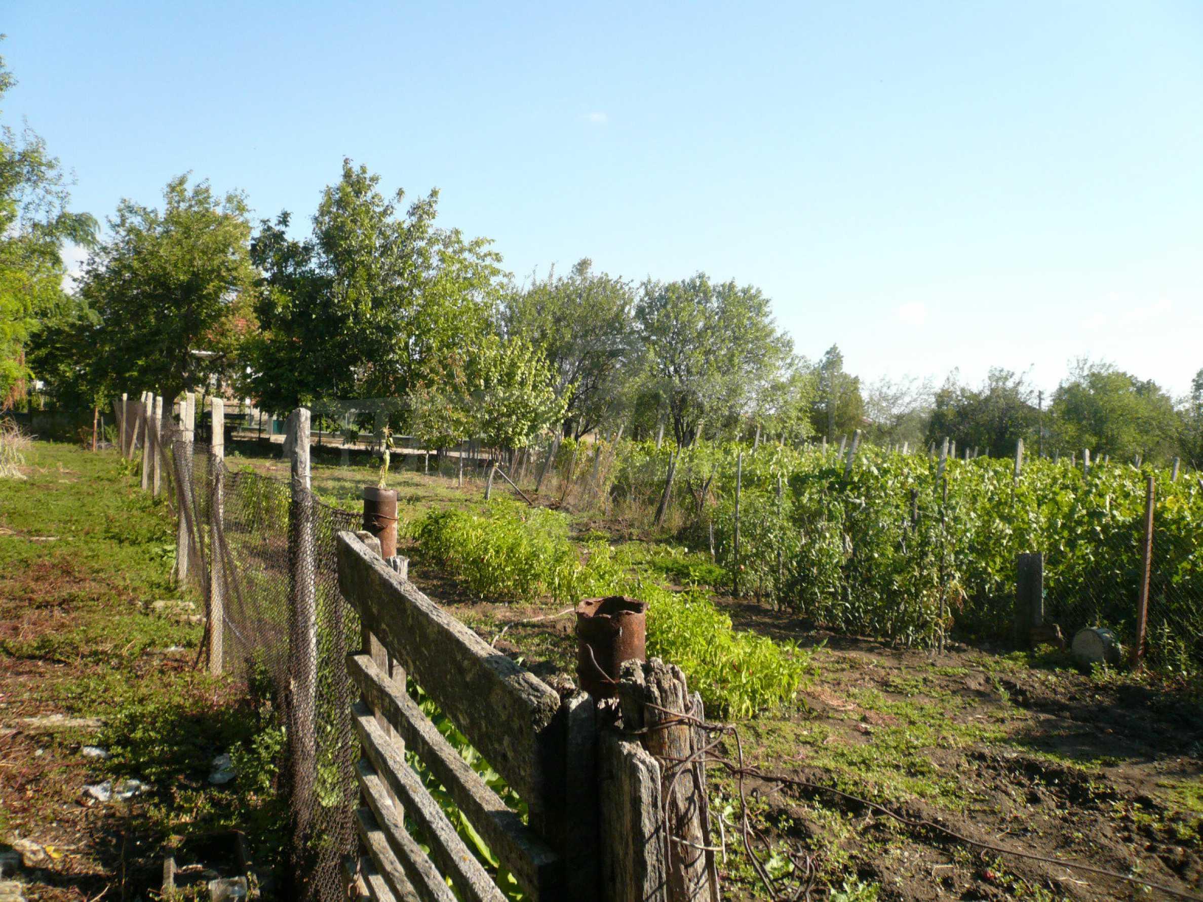 Zwei Landhäuser mit einem Garten 10 km von Vidin entfernt 13