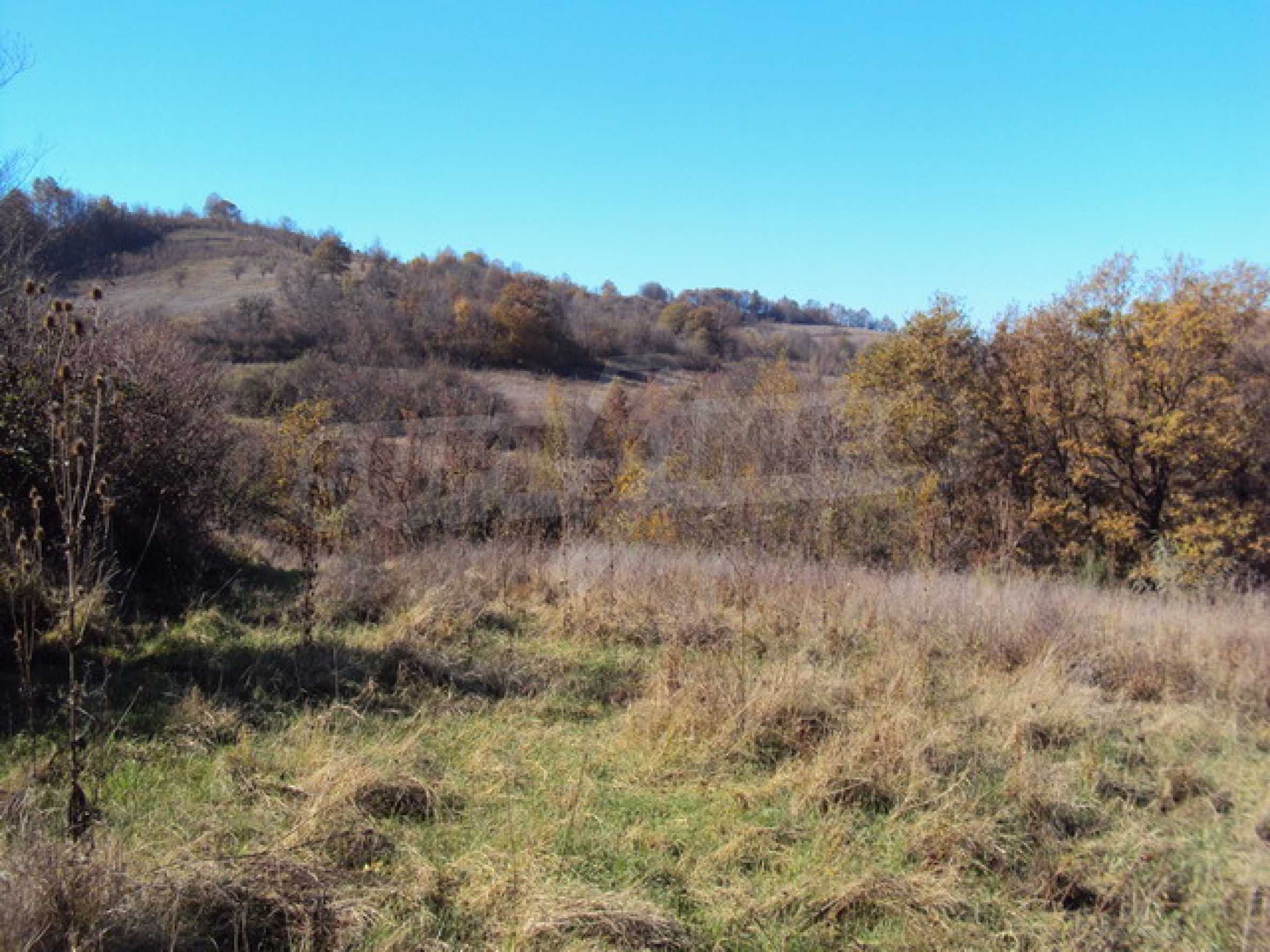 Regulated land for sale! 1