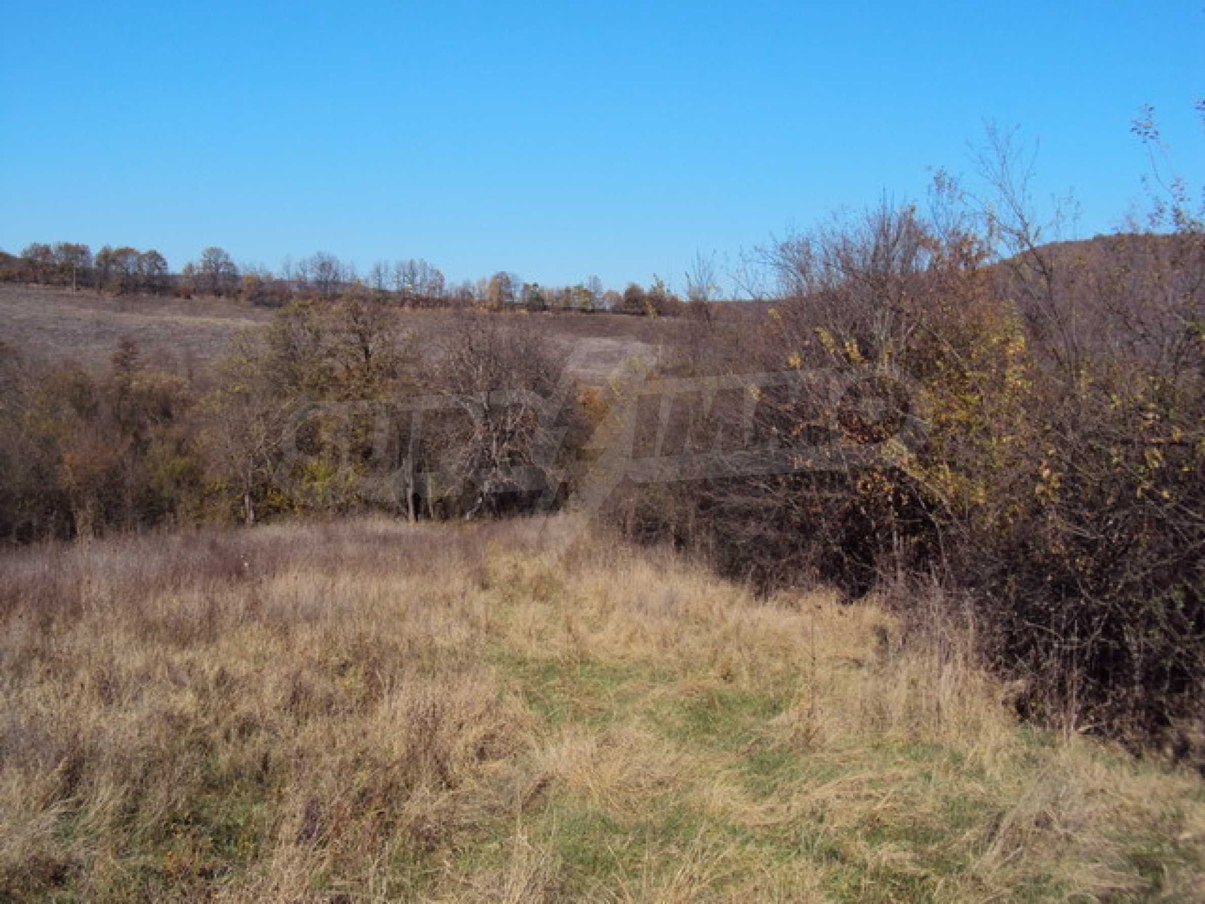 Regulated land for sale! 3