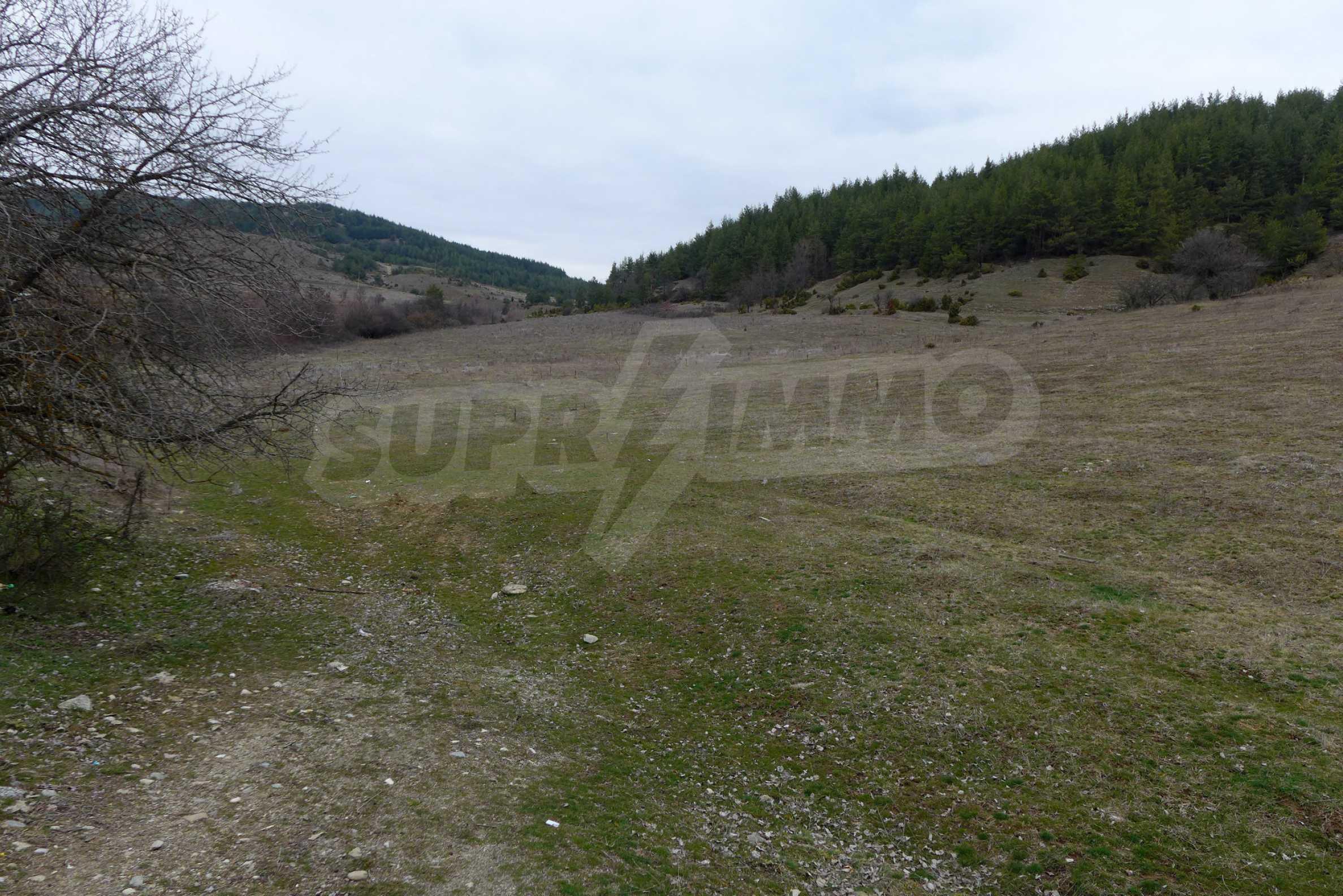 Baugrundstück mit Mineralquellen bei Bansko 1