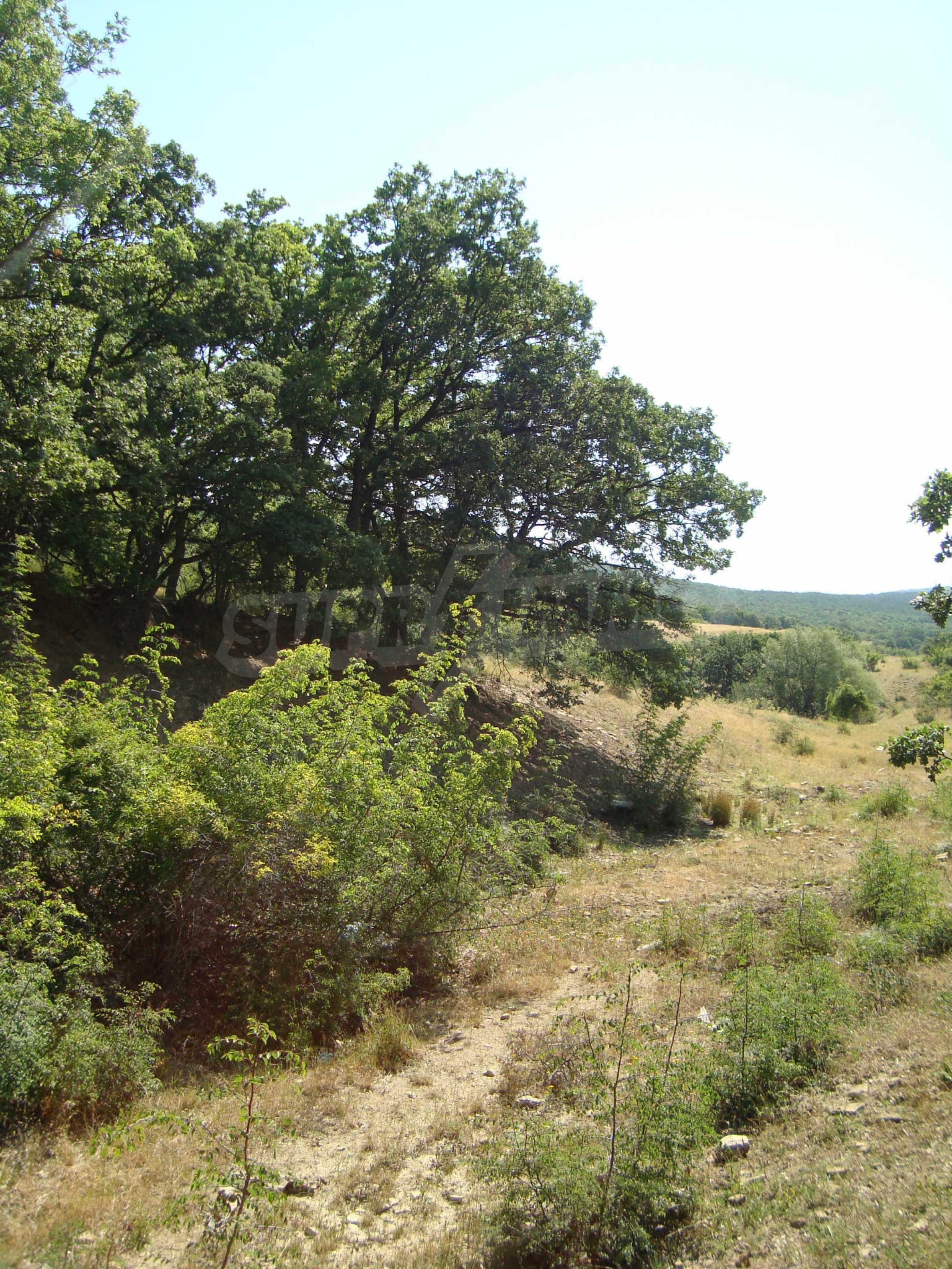 Vast plot of land for sale near Sunny Beach 9
