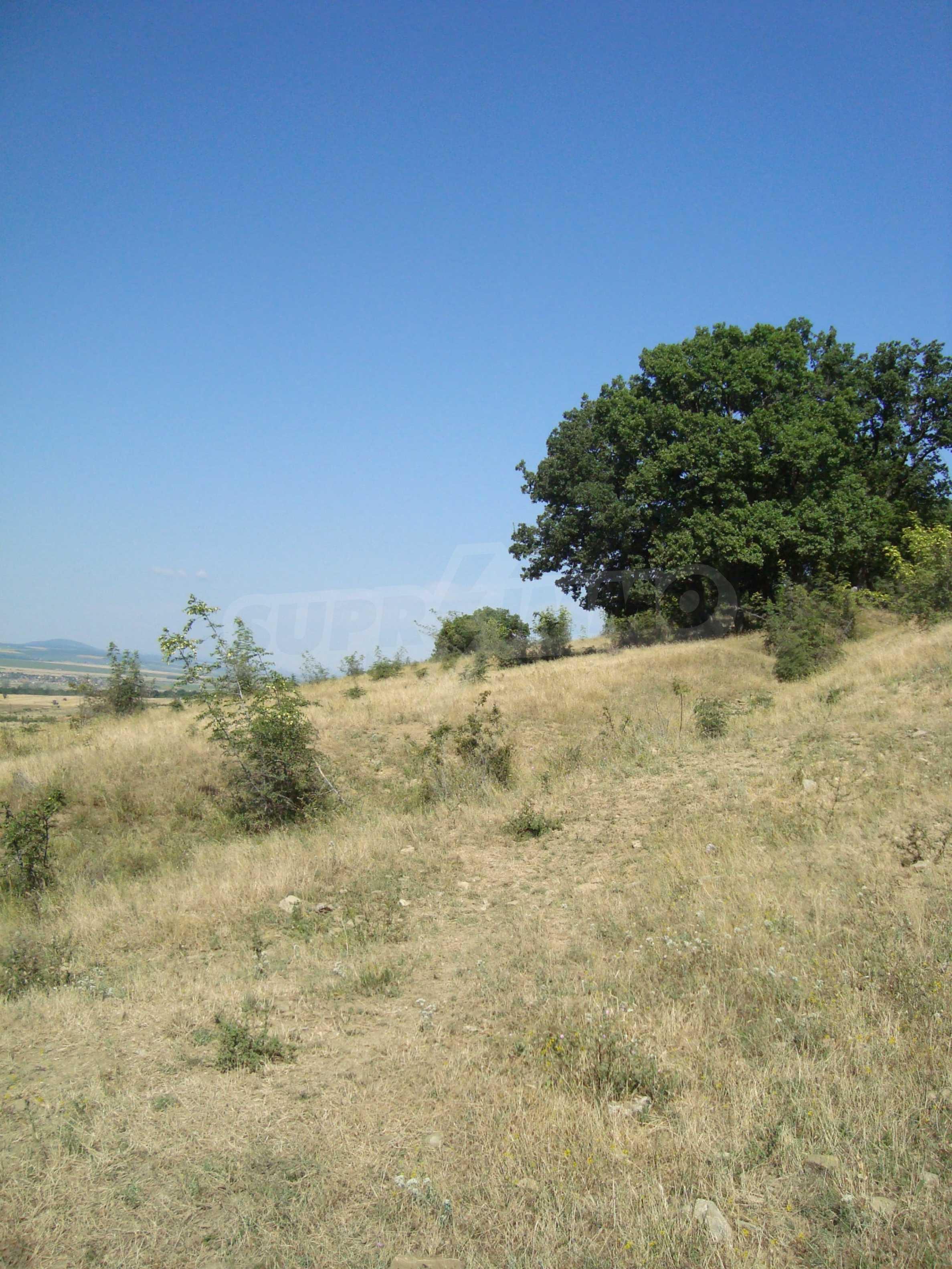 Vast plot of land for sale near Sunny Beach 11