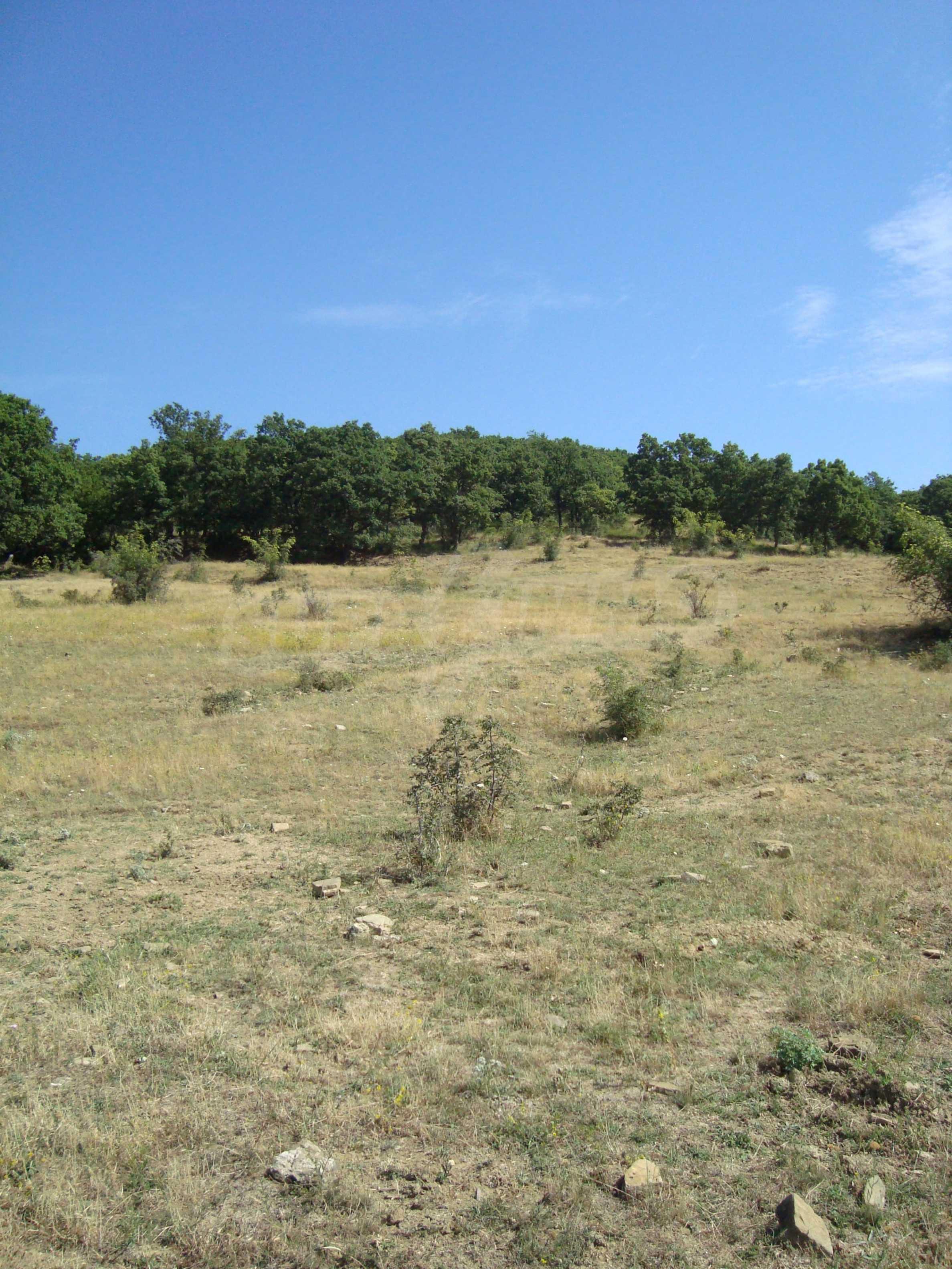 Vast plot of land for sale near Sunny Beach 14