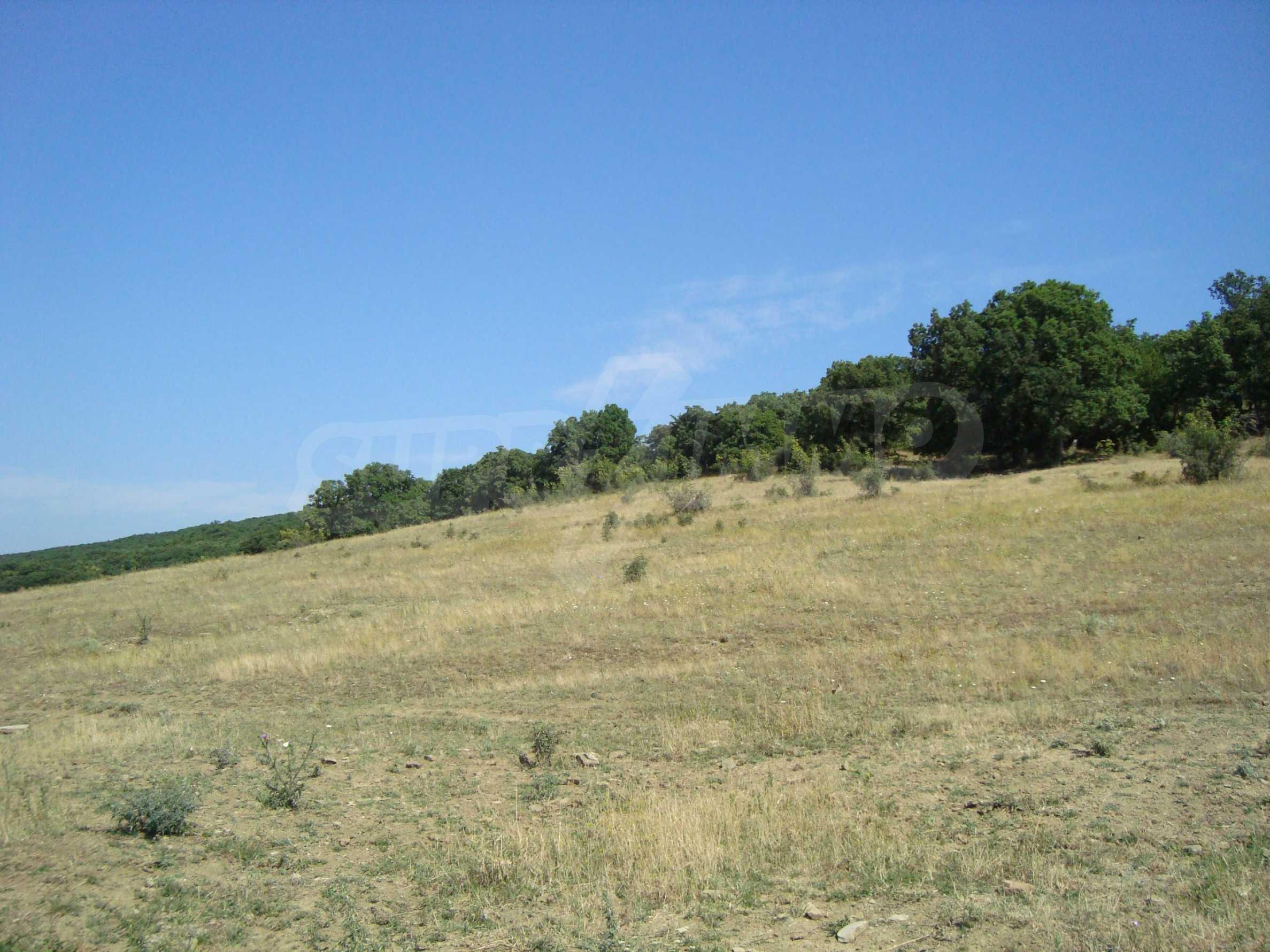 Vast plot of land for sale near Sunny Beach 15