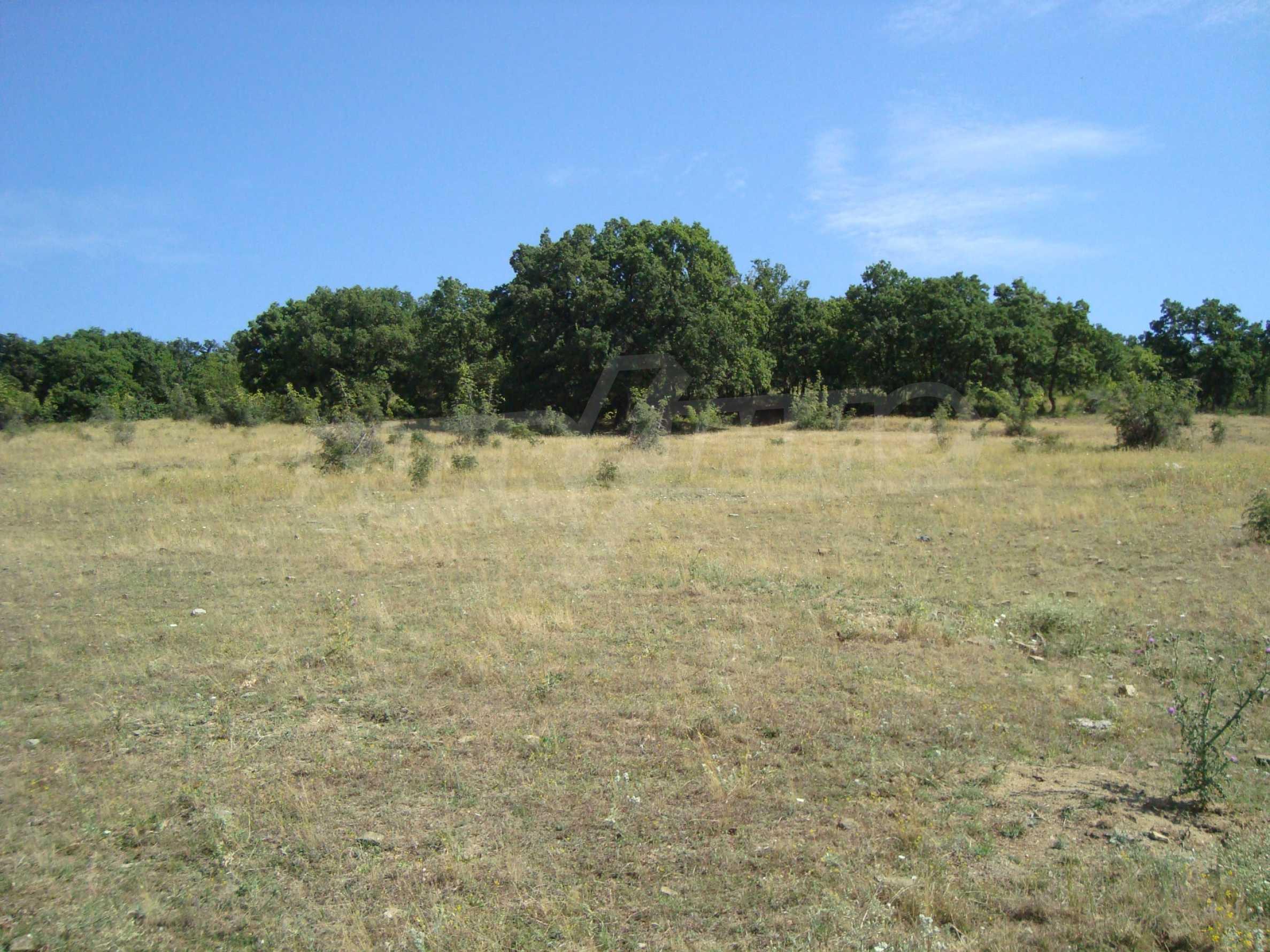 Vast plot of land for sale near Sunny Beach 18