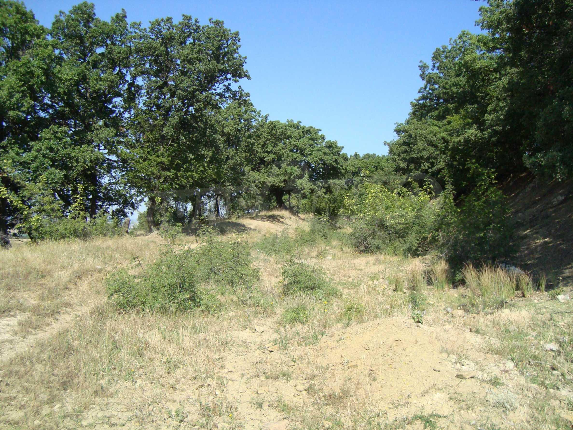 Vast plot of land for sale near Sunny Beach 1