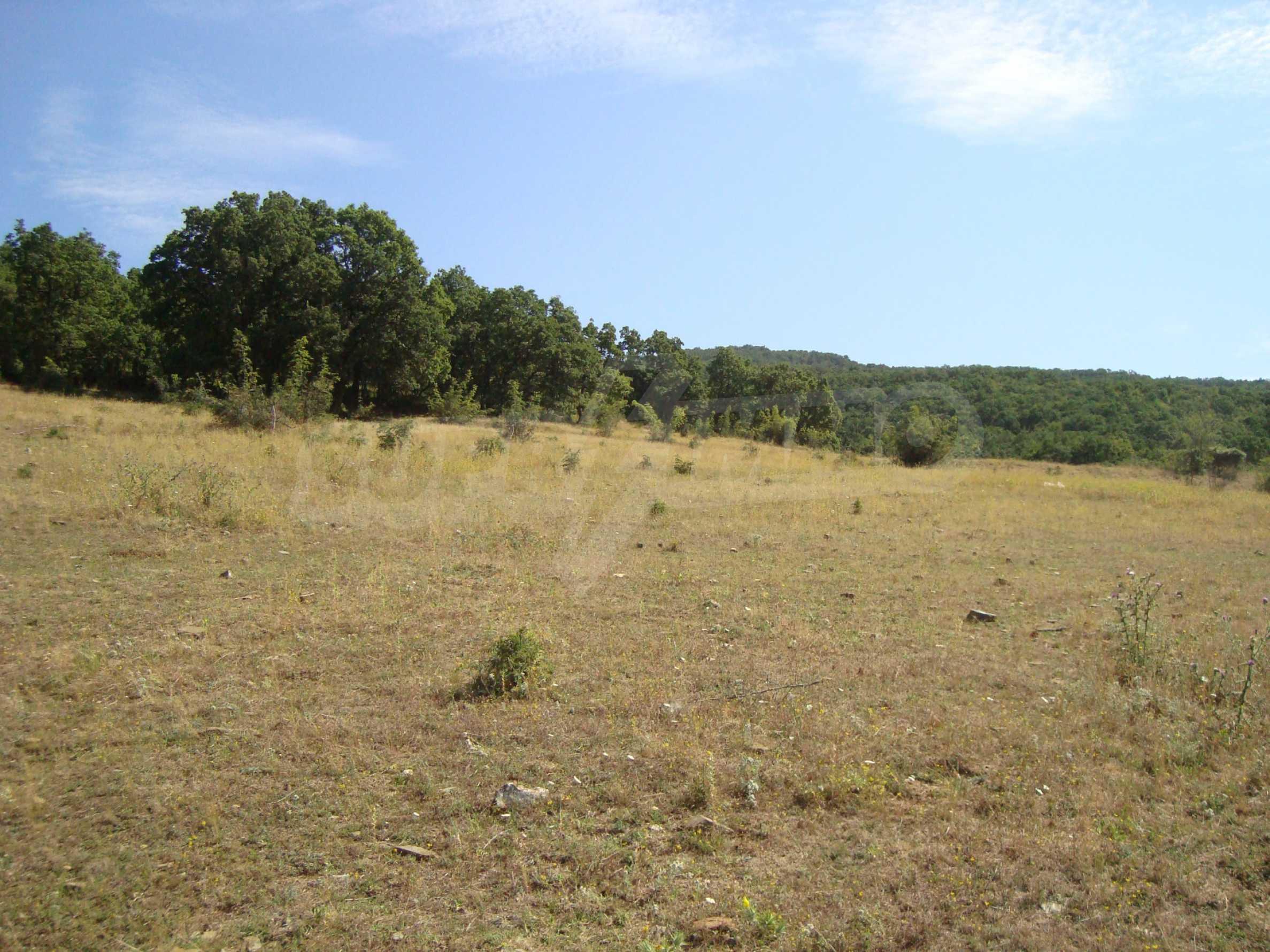 Vast plot of land for sale near Sunny Beach 19