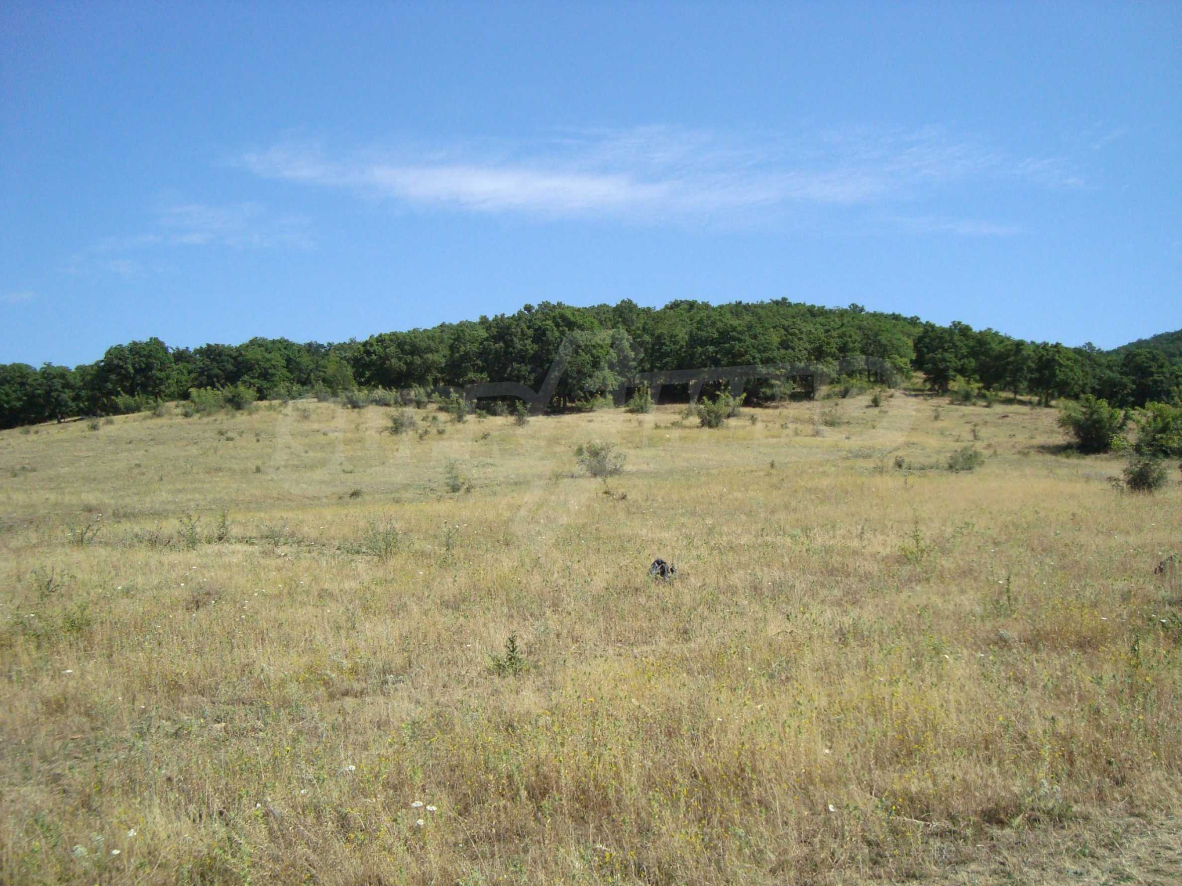 Vast plot of land for sale near Sunny Beach 2