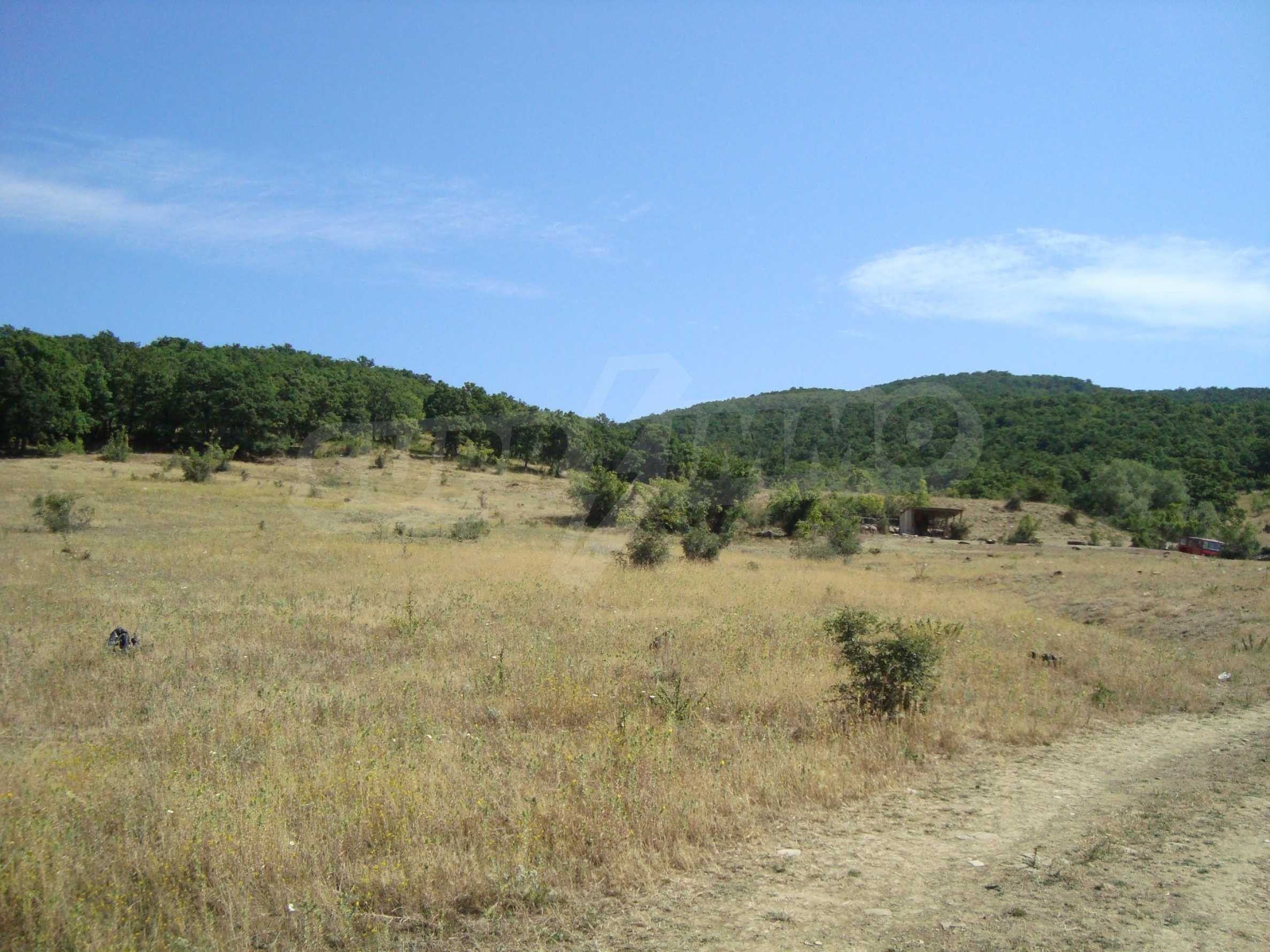 Vast plot of land for sale near Sunny Beach 3