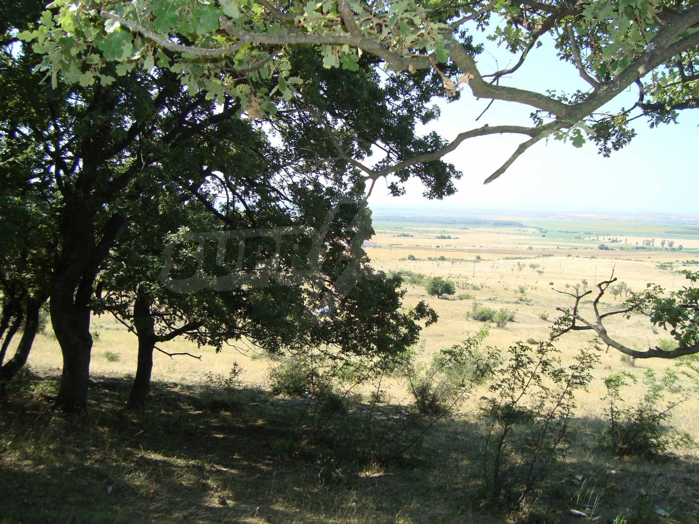 Vast plot of land for sale near Sunny Beach 5