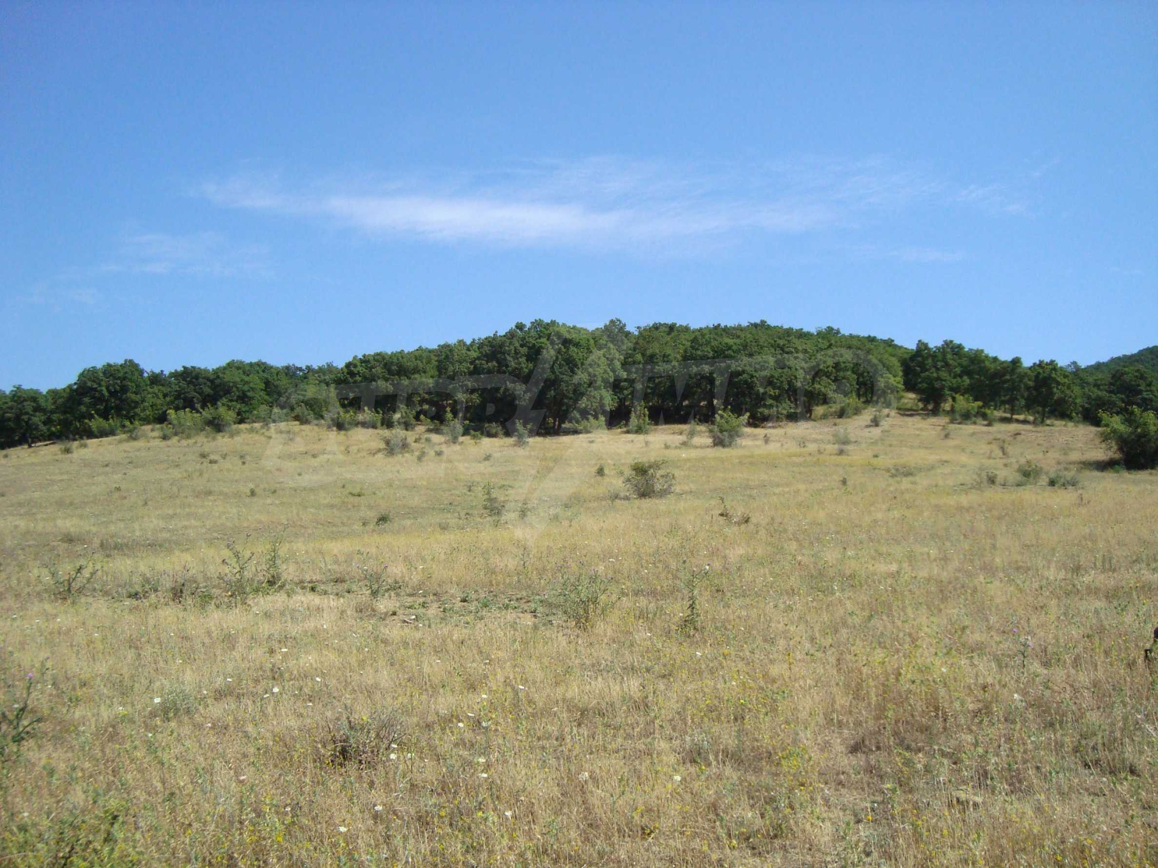 Vast plot of land for sale near Sunny Beach 7