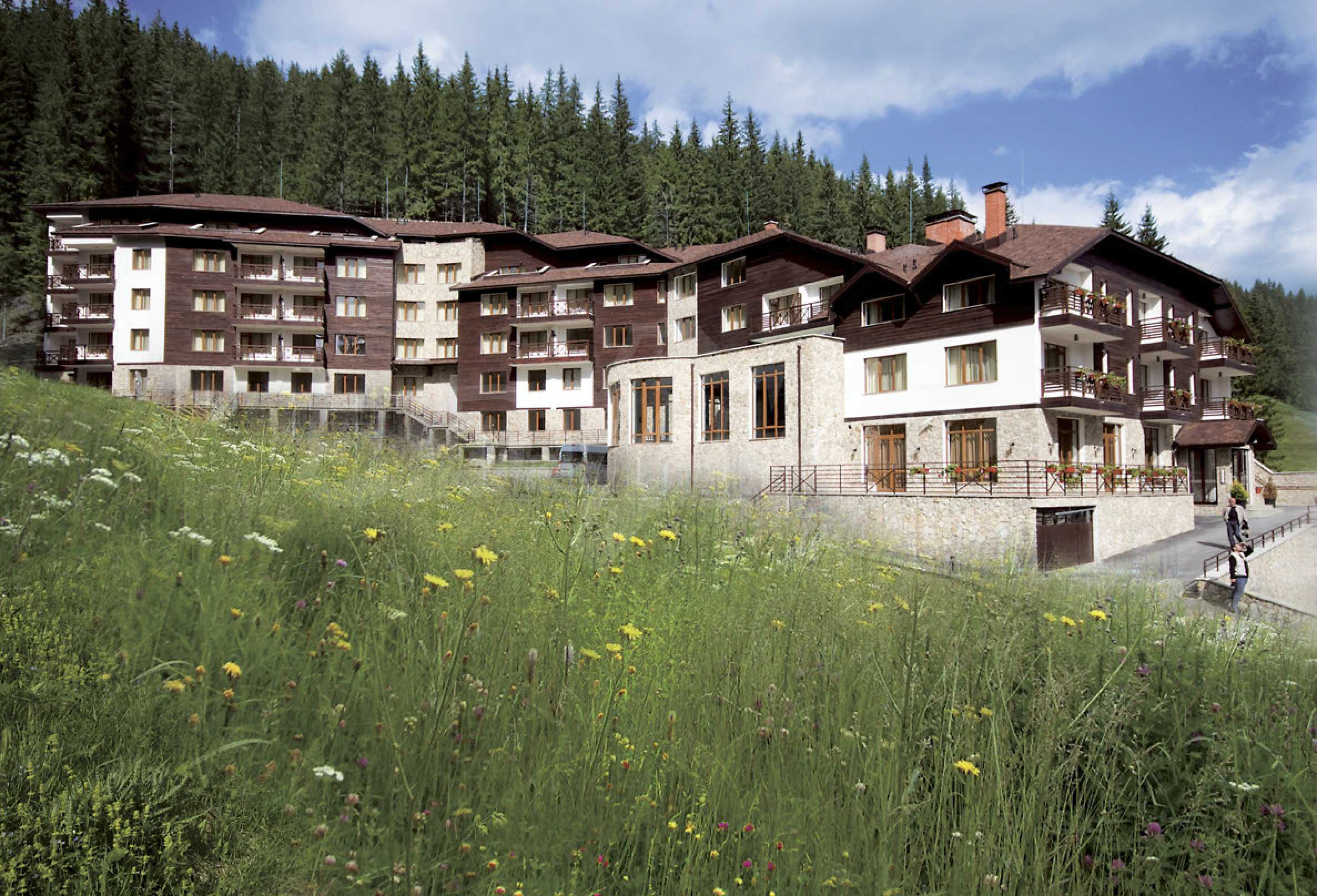 1-bedroom flat in the complex Stream Resort in Pamporovo 31
