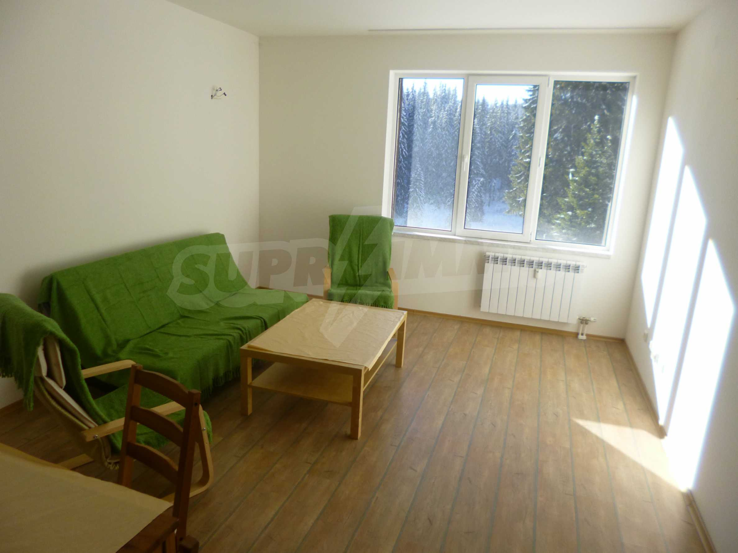 1-bedroom flat in the complex Stream Resort in Pamporovo 3