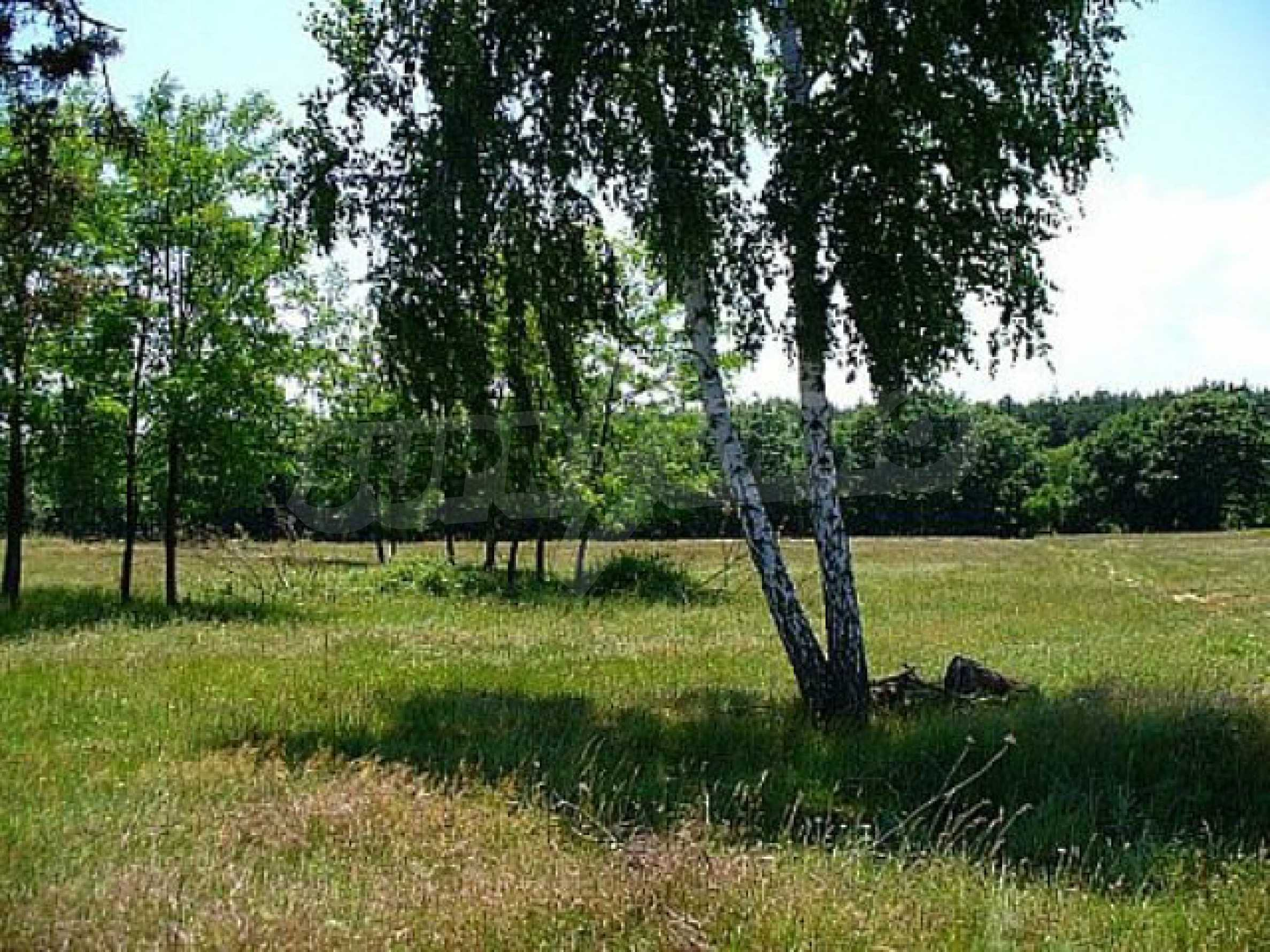 Buildng land in the village Rudnik 10