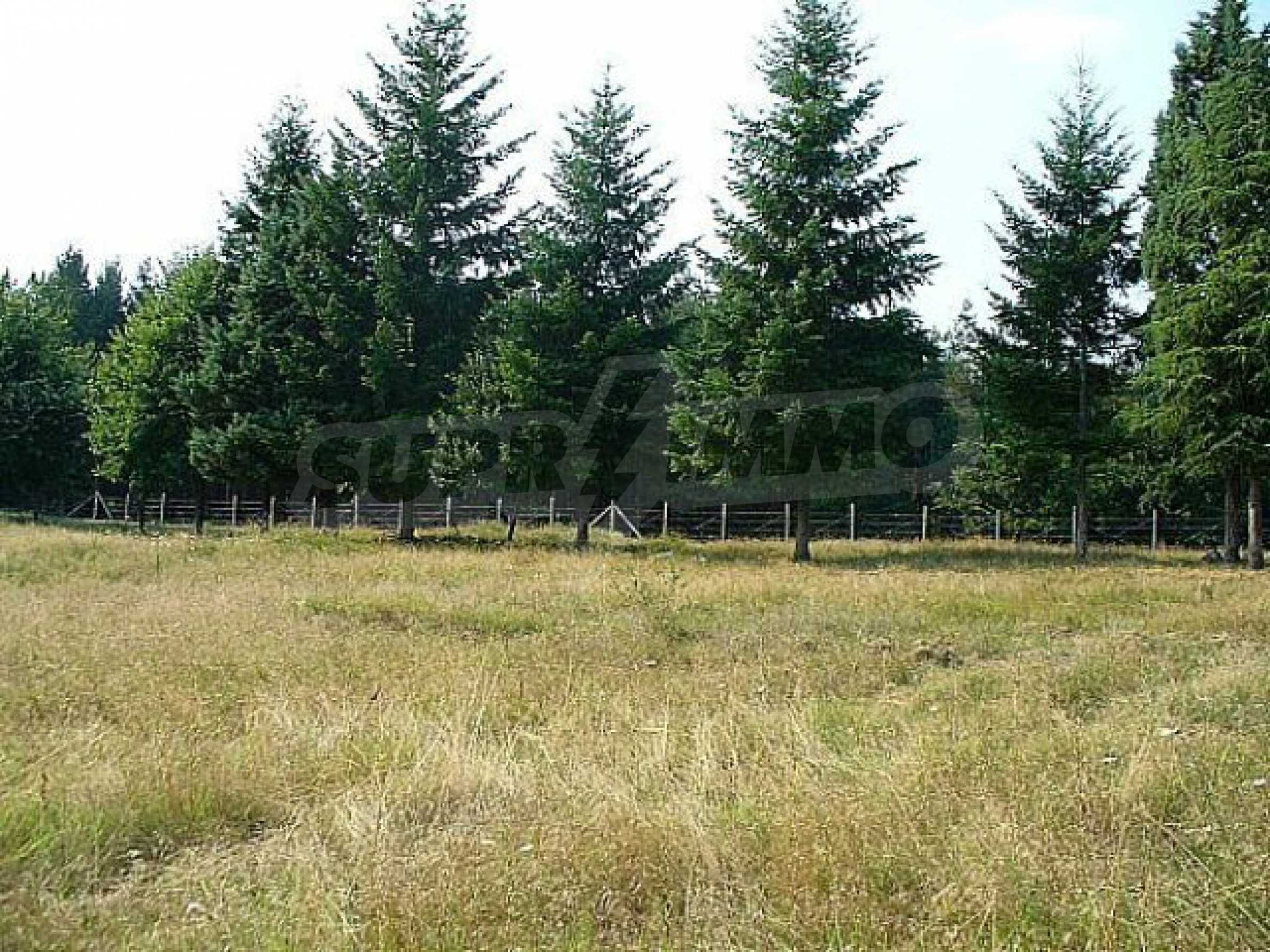 Buildng land in the village Rudnik 17