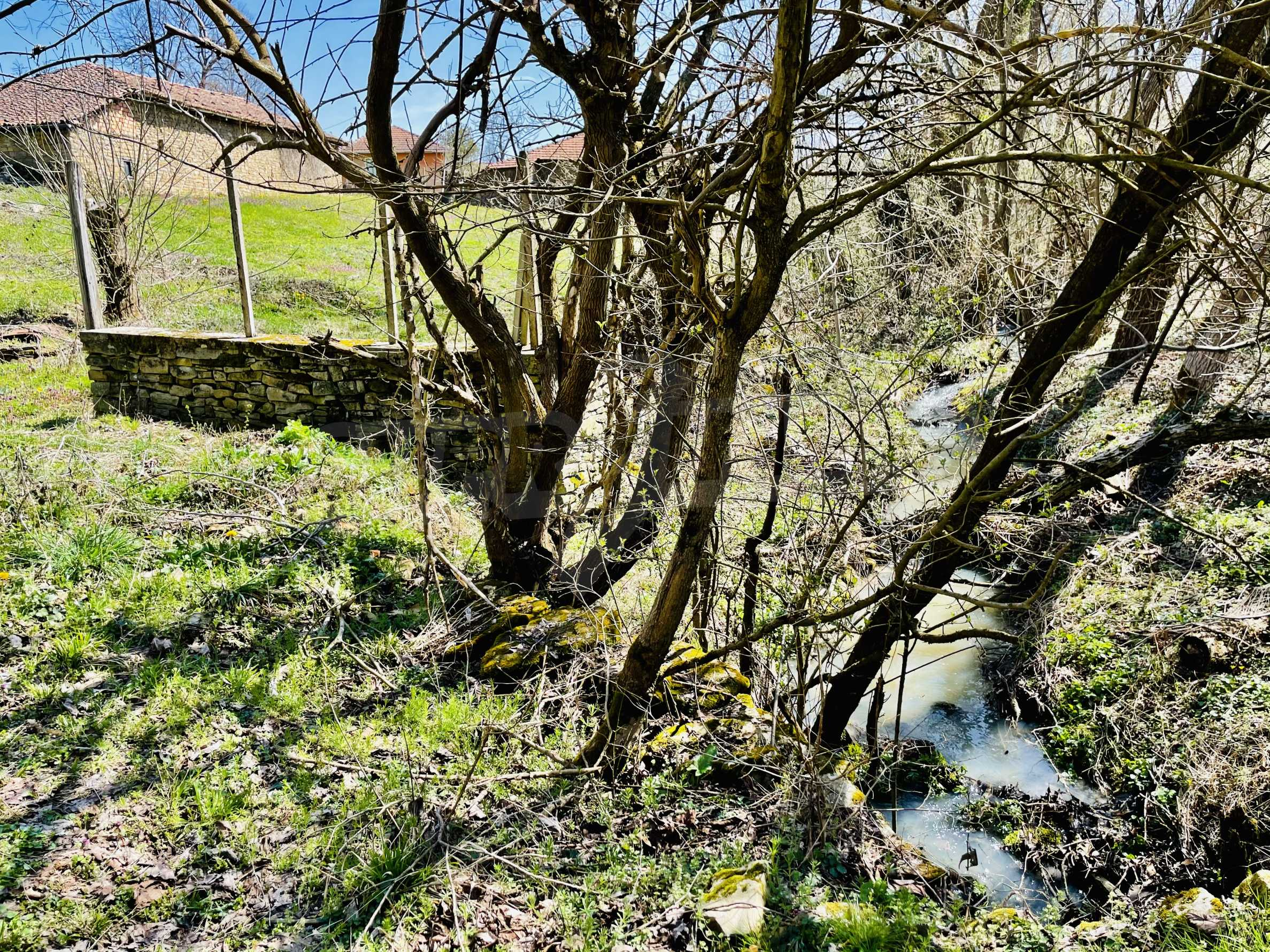 Two houses in a large yard only 15 km from Veliko Tarnovo 9