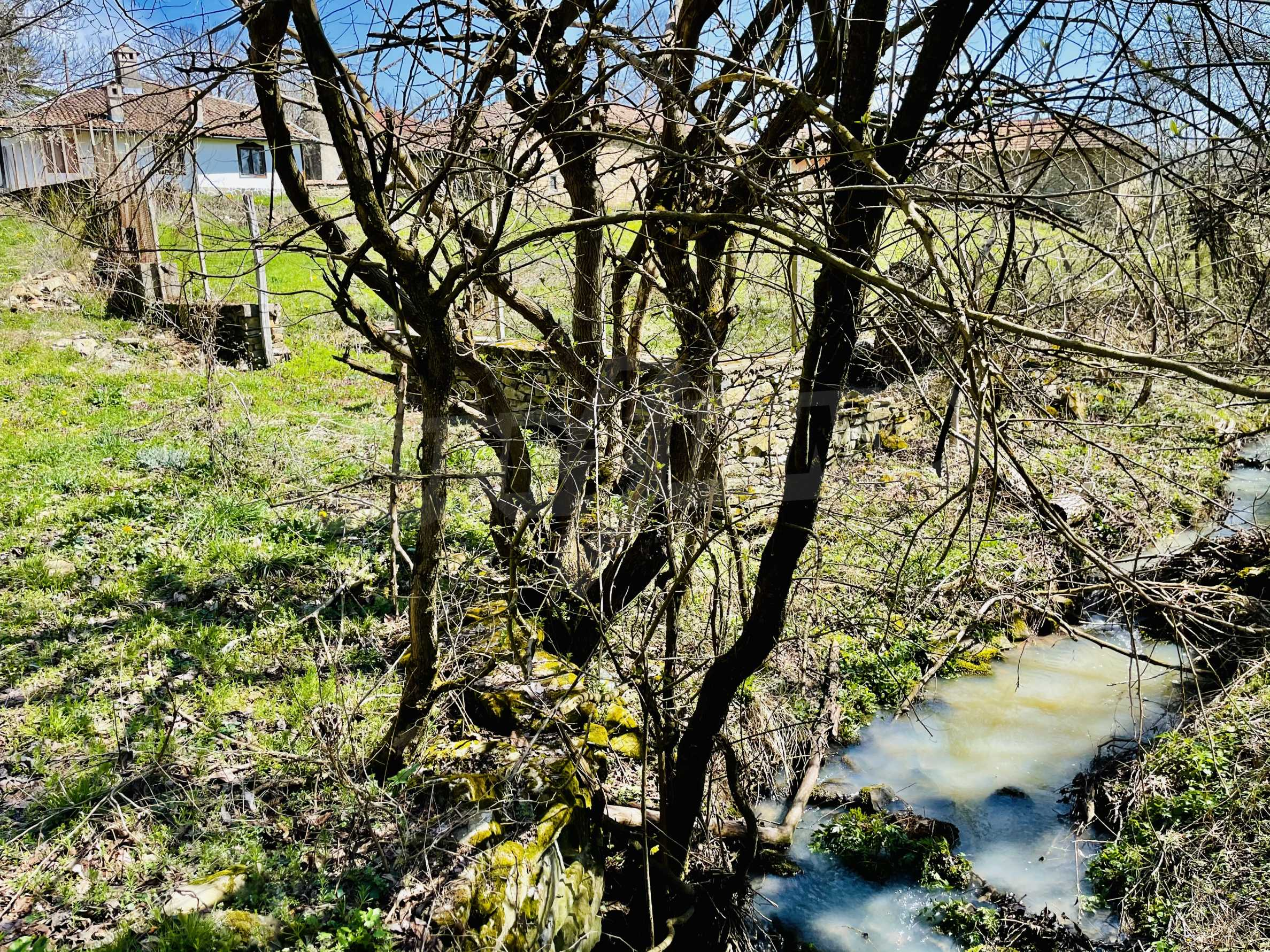 Two houses in a large yard only 15 km from Veliko Tarnovo 32