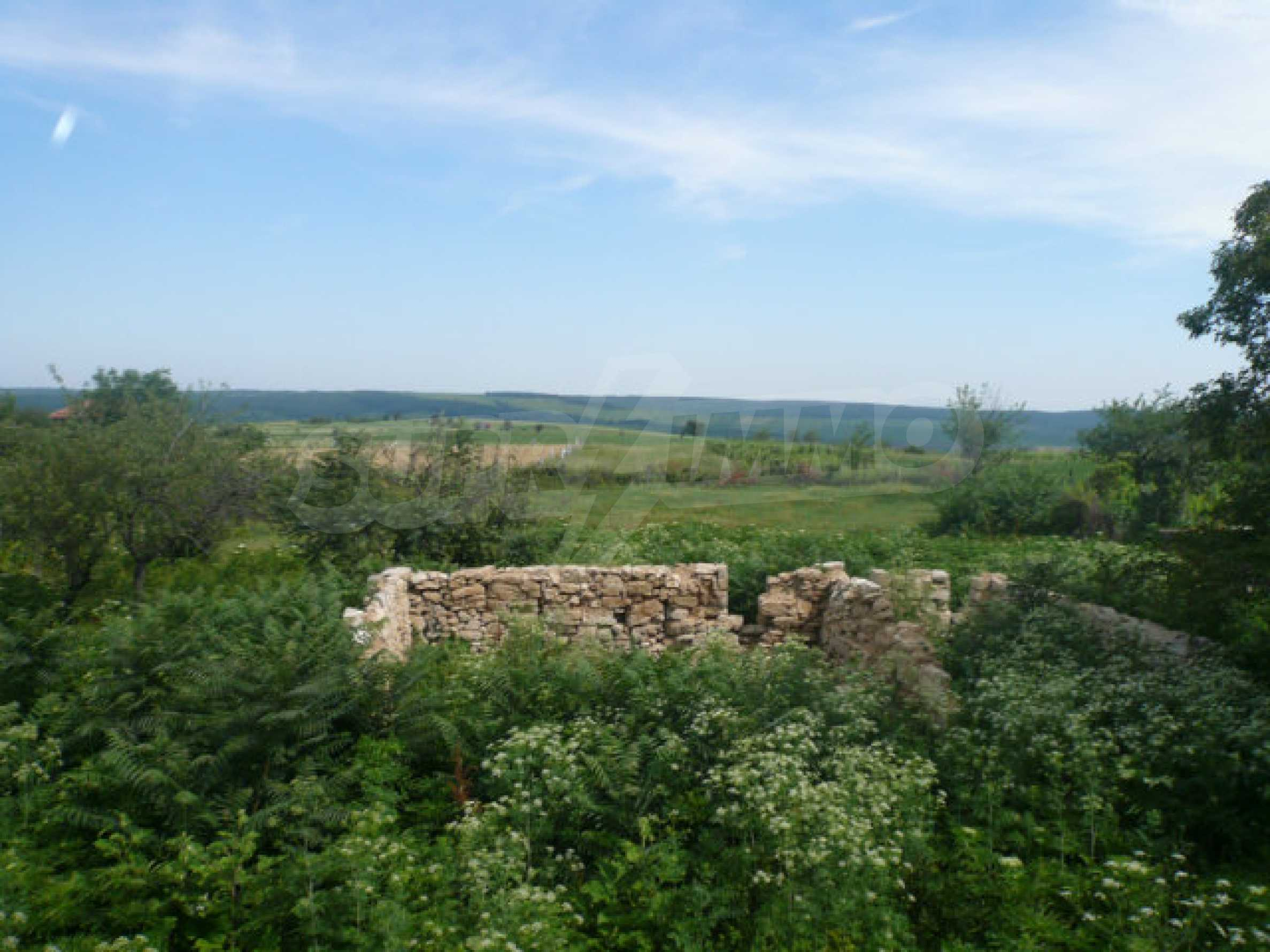 Well-sized house and garden near Vidin 14