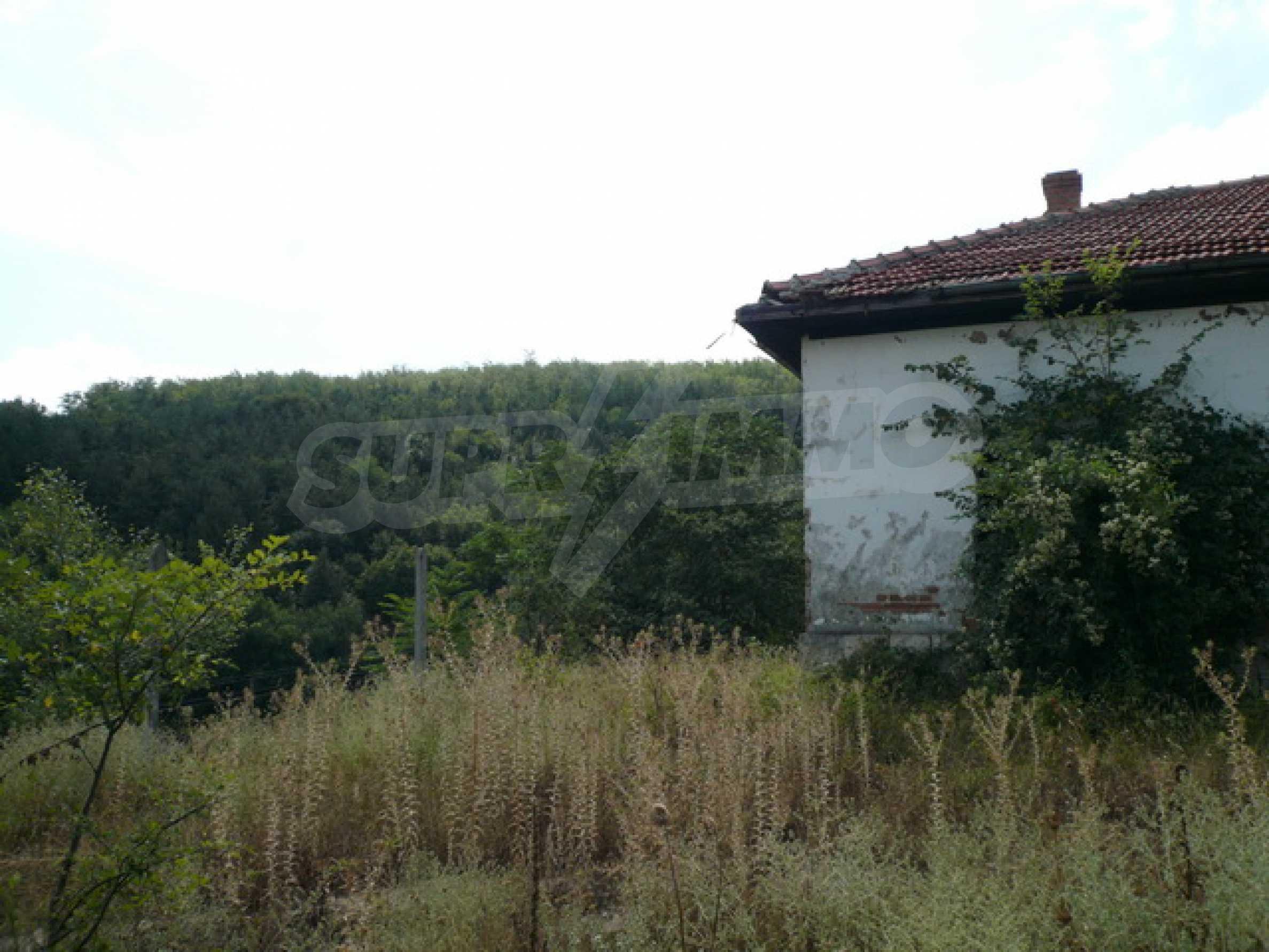 Haus am Ufer der Donau 12