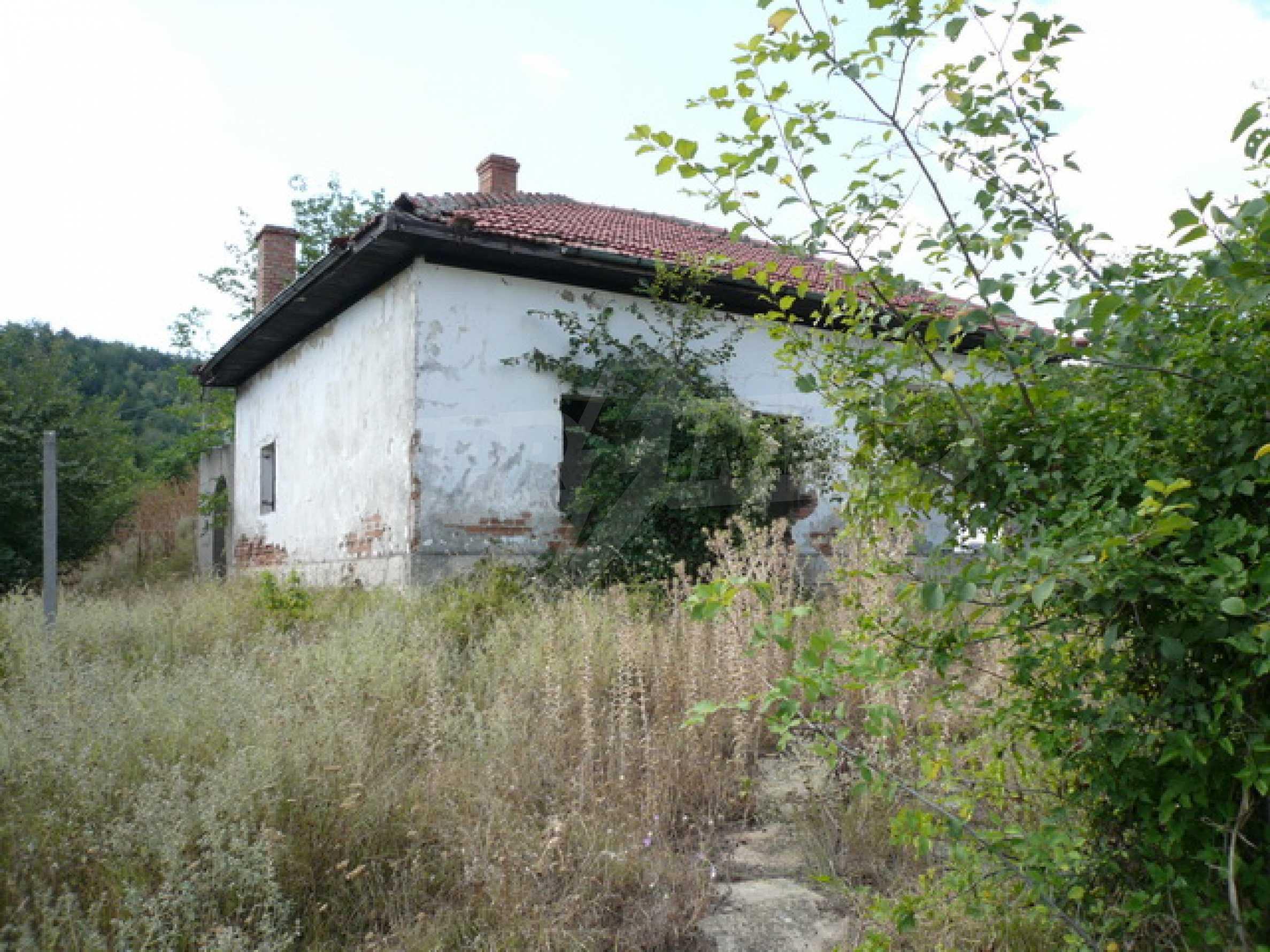 Haus am Ufer der Donau 1