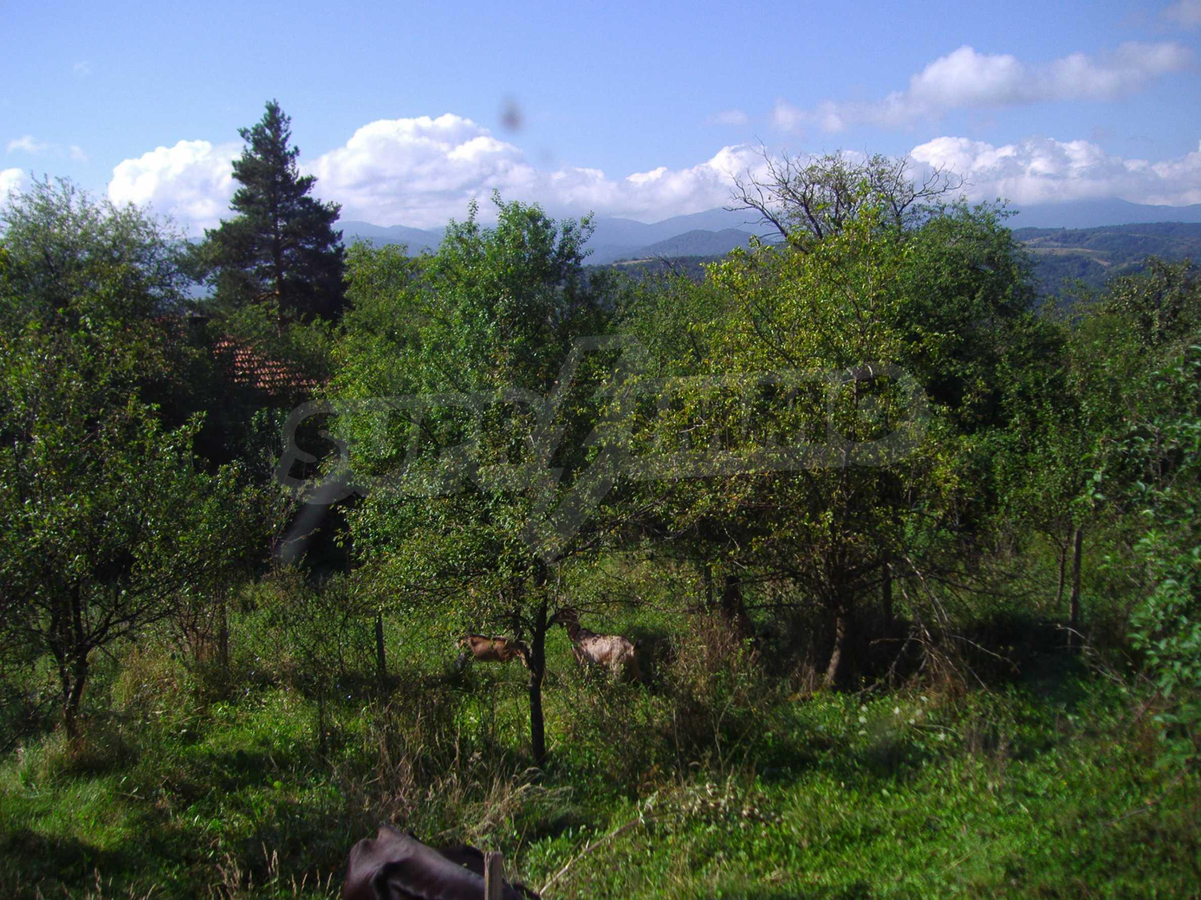 Authentisches Haus 10 km vom Kurort und der Stadt Tryavna entfernt 5