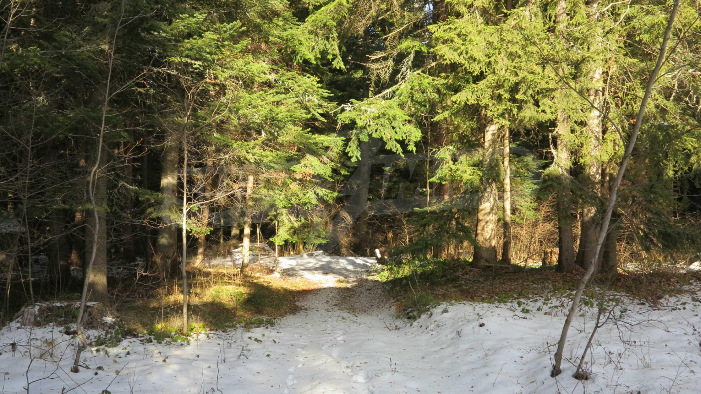Großes Grundstück mit zweistöckiger Villa im Skigebiet Borovets 1