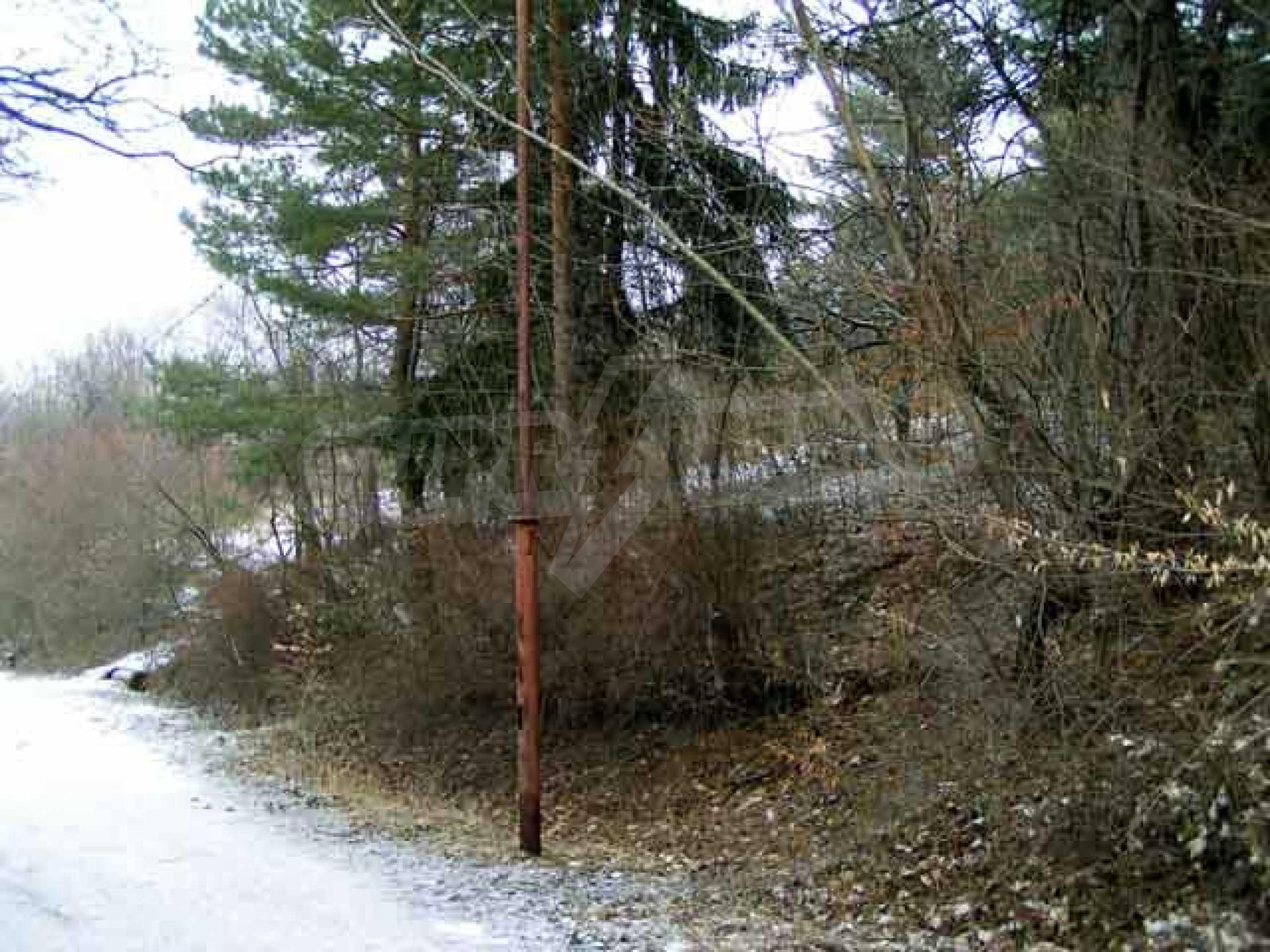 Бояна- Стар  Беловодски Път