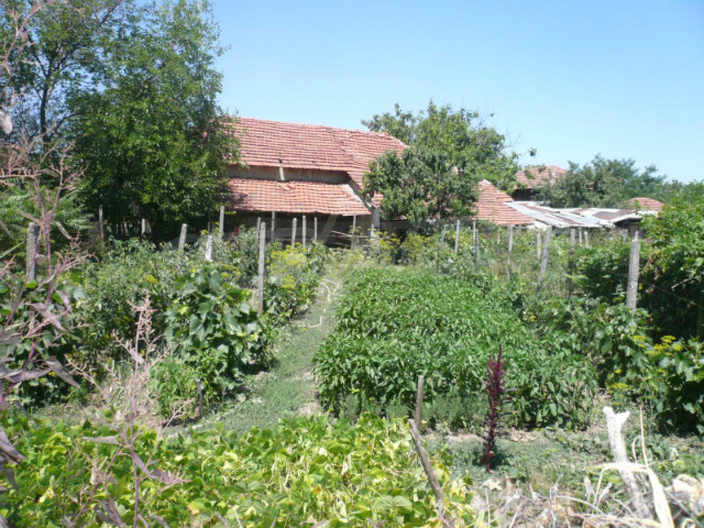 Einfamilienhaus mit schönem Garten, 40 km von Vidin entfernt 5