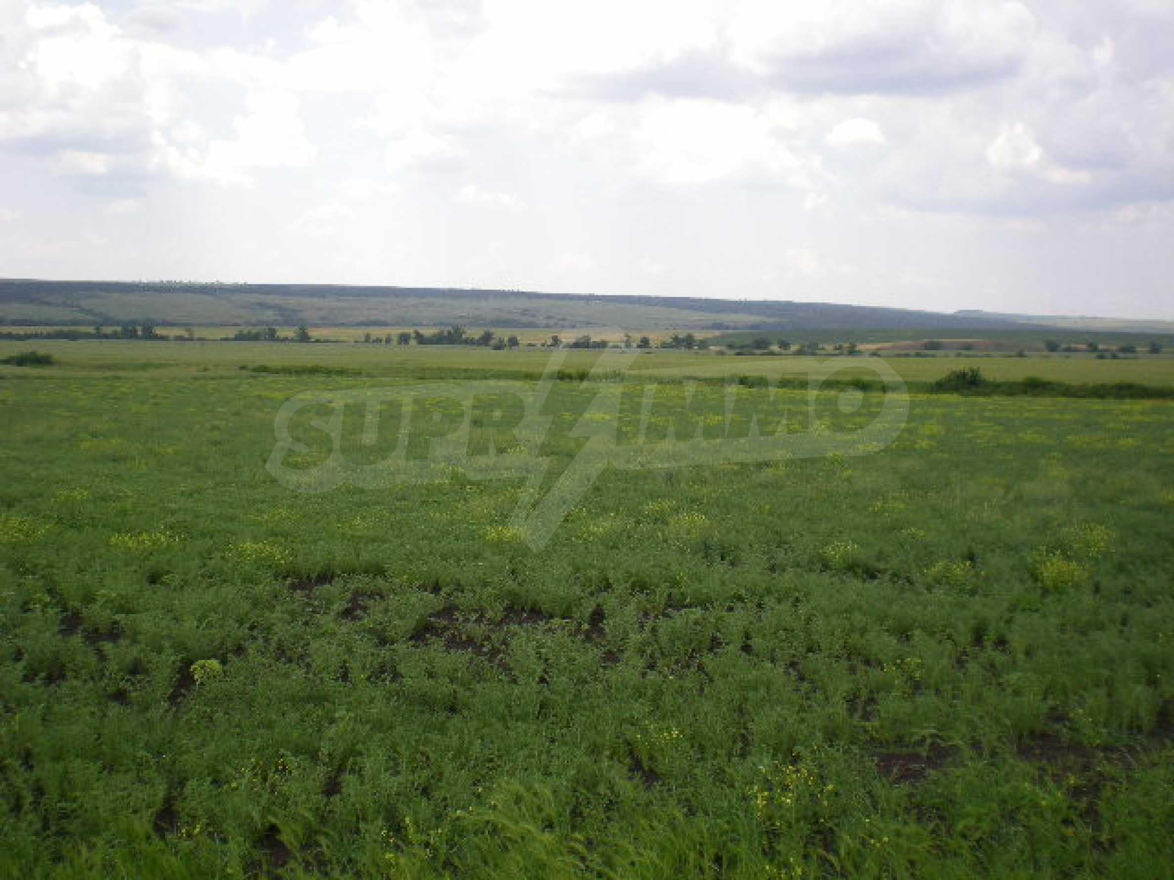 Огромный участок сельскохозяйственной земли недалеко от магистрали