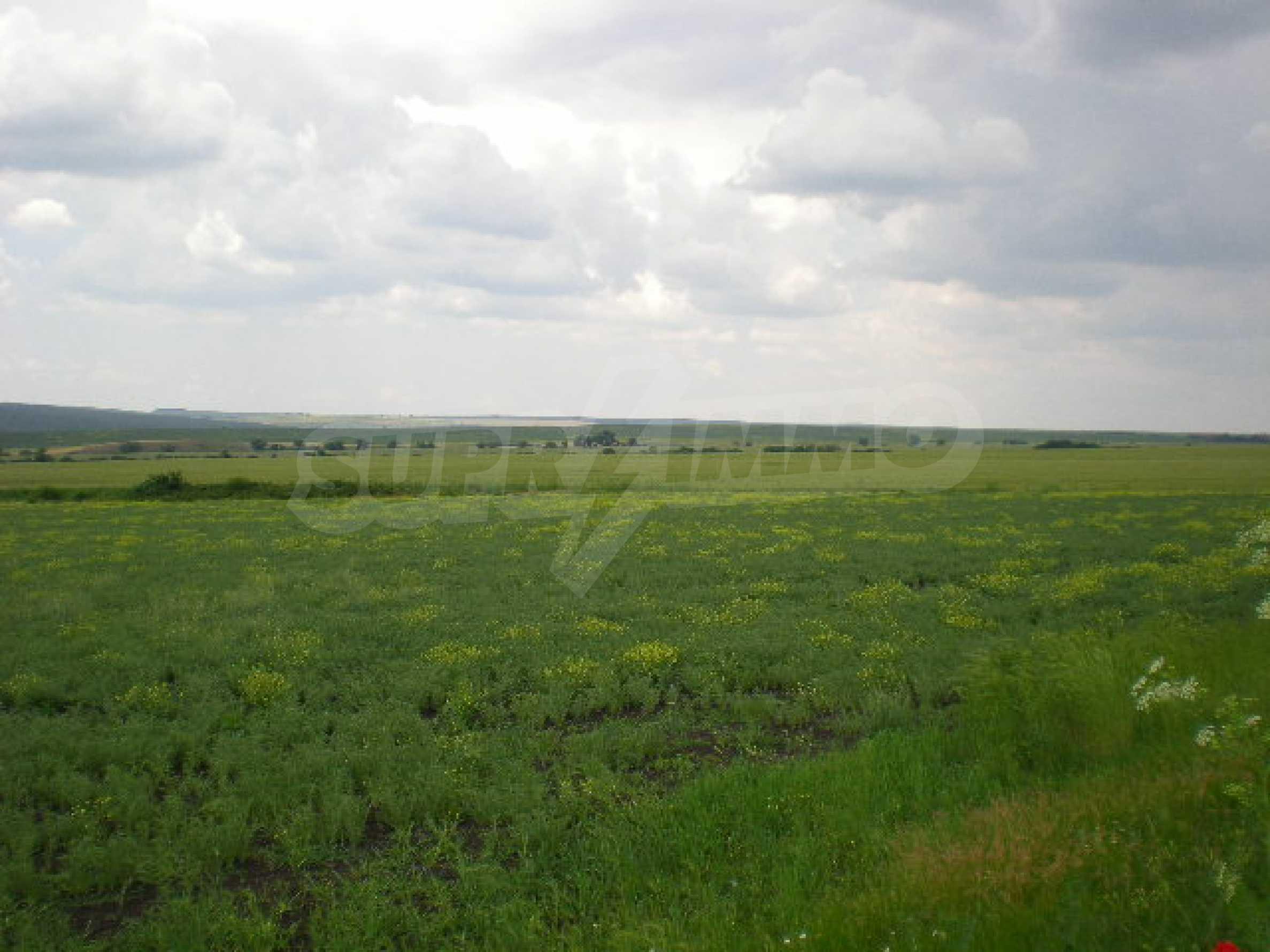 Огромный участок сельскохозяйственной земли недалеко от магистрали 3