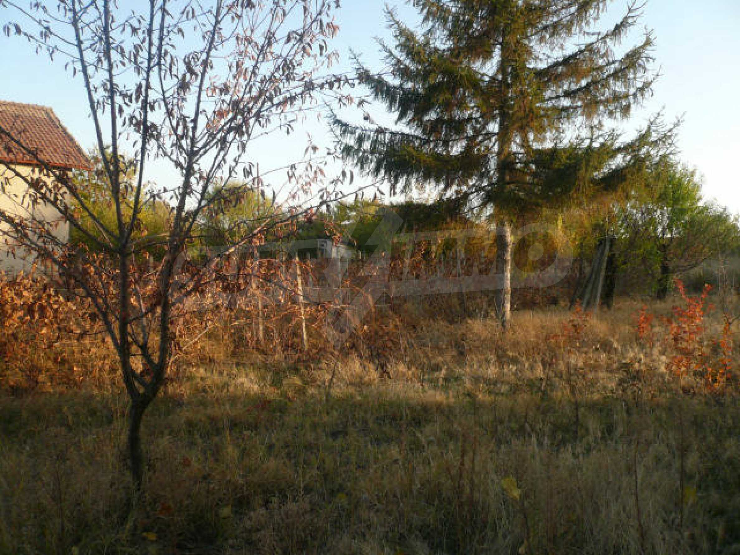 House for sale near Vidin 4