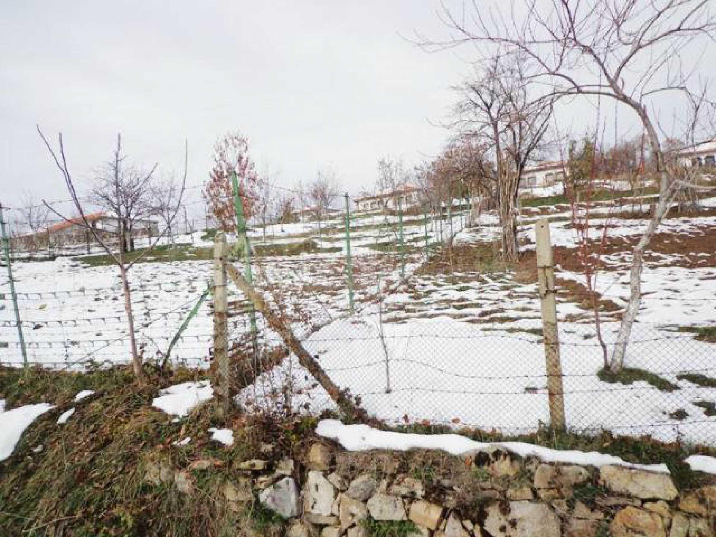 Grundstück zum Verkauf in einem Dorf 5 km von Tryavna entfernt 3