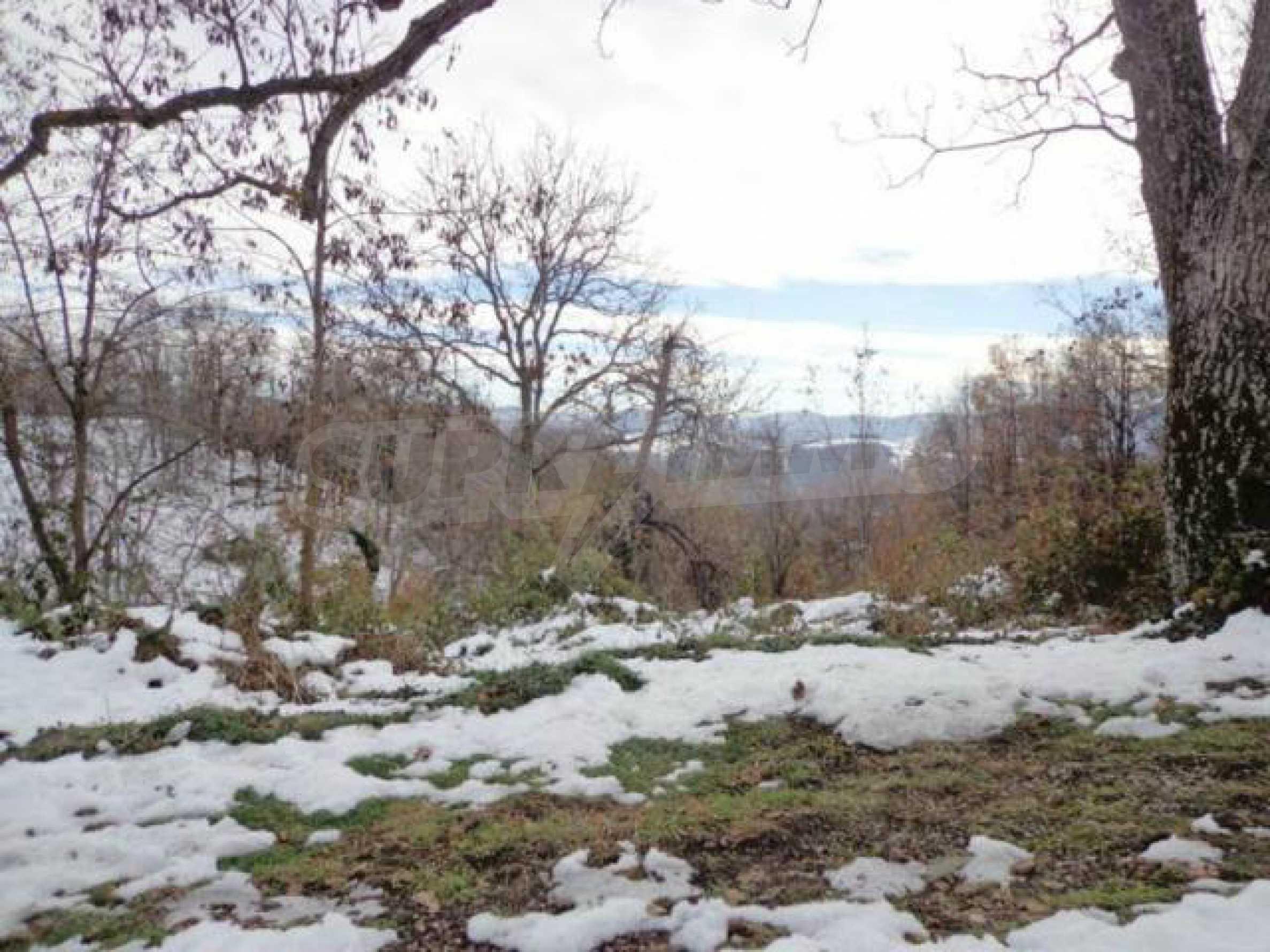 Grundstück zum Verkauf in einem Dorf 5 km von Tryavna entfernt 6