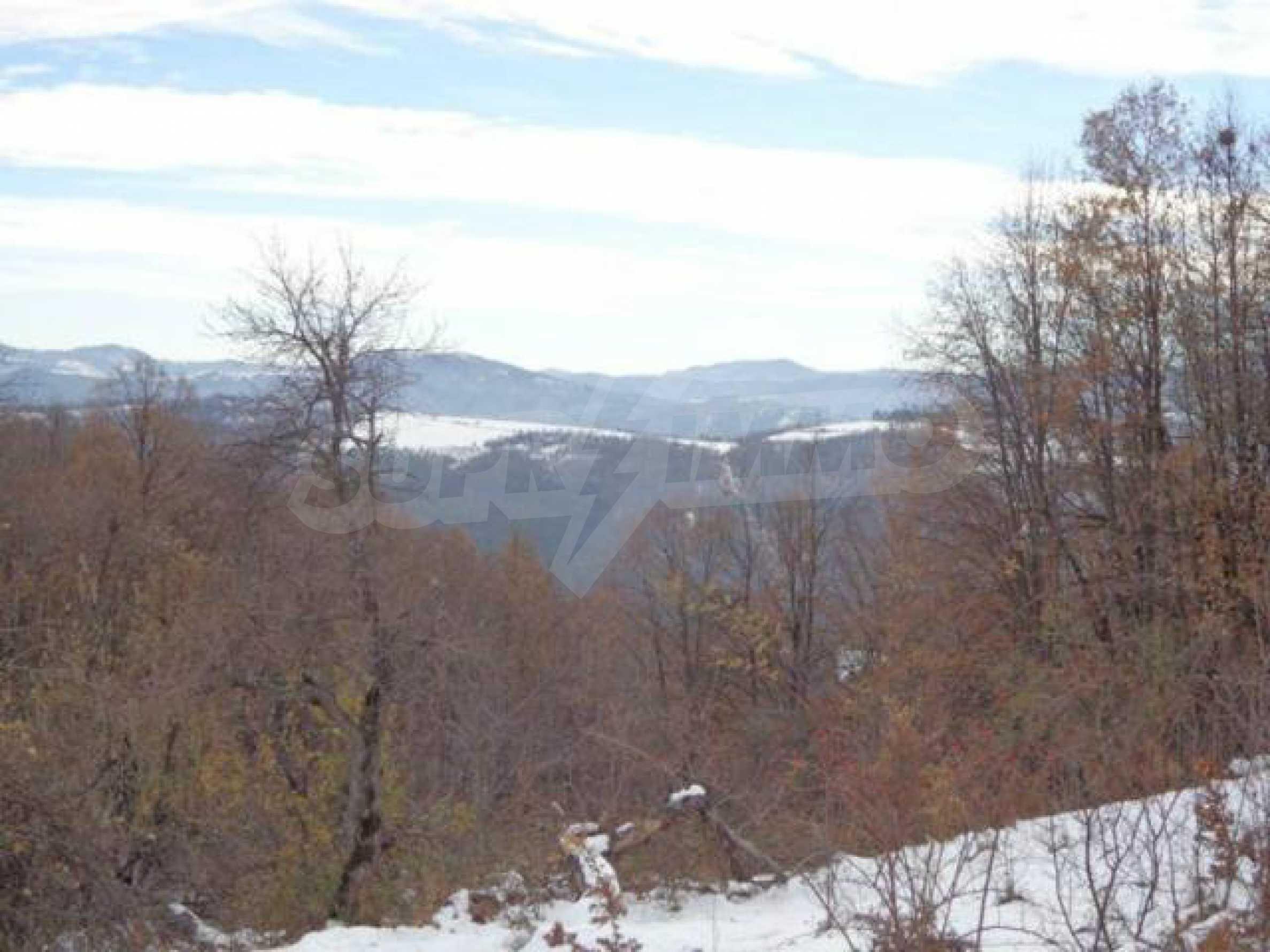 Grundstück zum Verkauf in einem Dorf 5 km von Tryavna entfernt 8