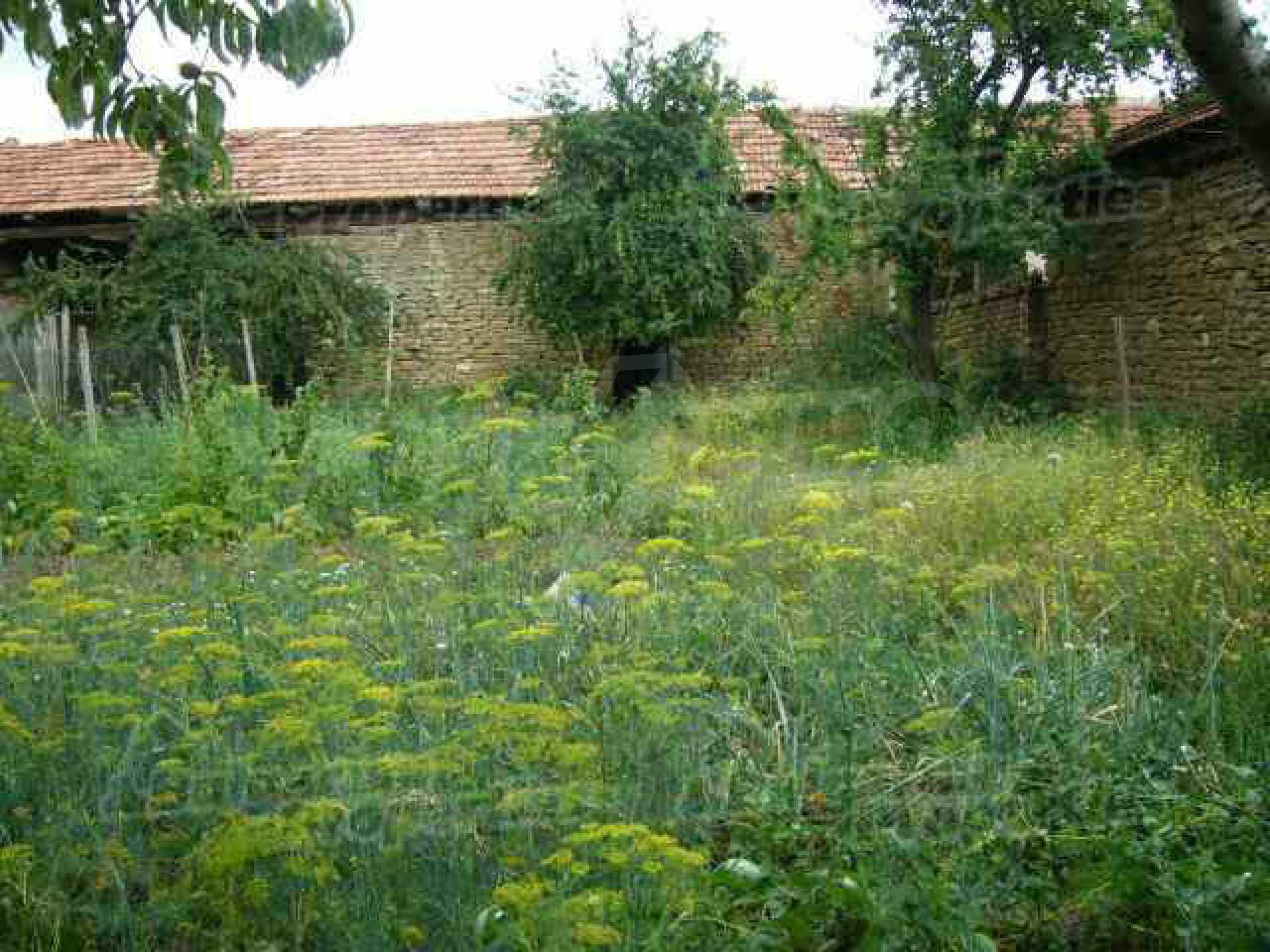 Einstöckiges Haus in einer kleinen Stadt, nur 15 km von Pavlikeni entfernt 8