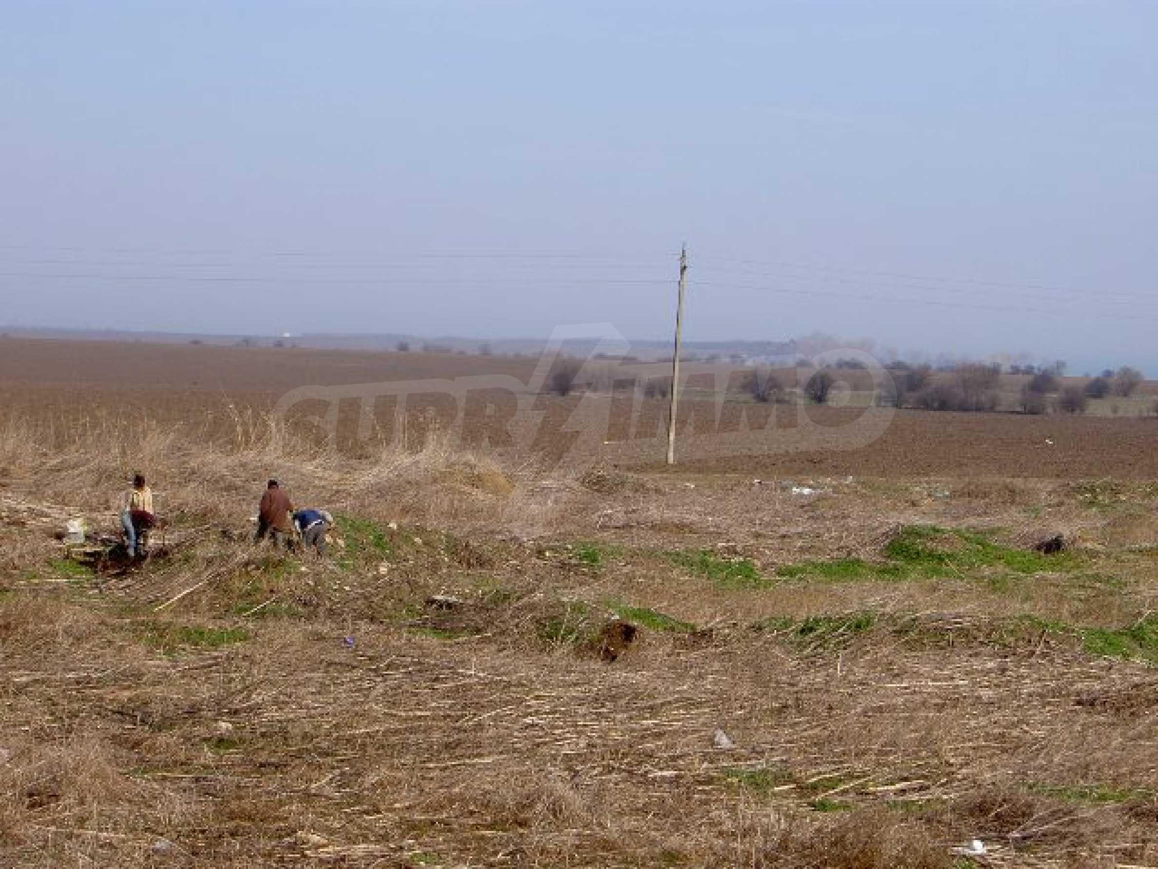 Plot near Romanian border 6