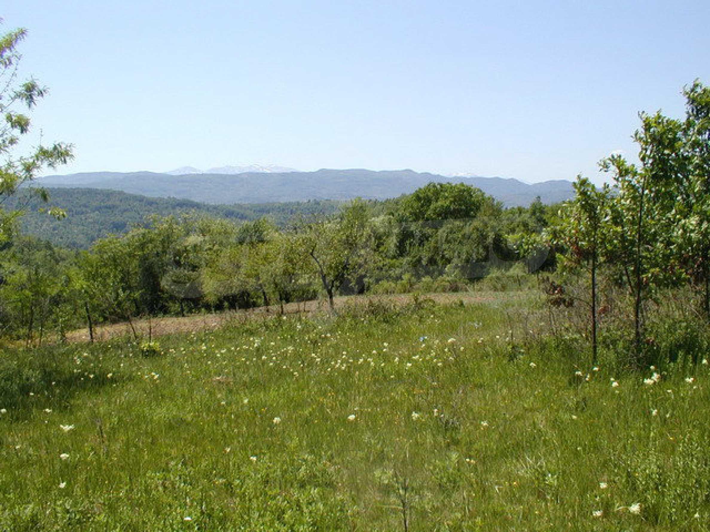 Geregeltes Grundstück in einem Dorf in der Nähe von Gabrovo 1