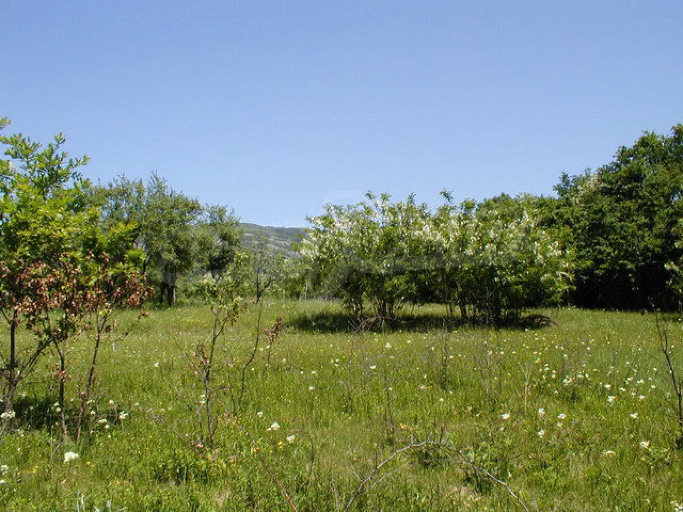 Geregeltes Grundstück in einem Dorf in der Nähe von Gabrovo 2