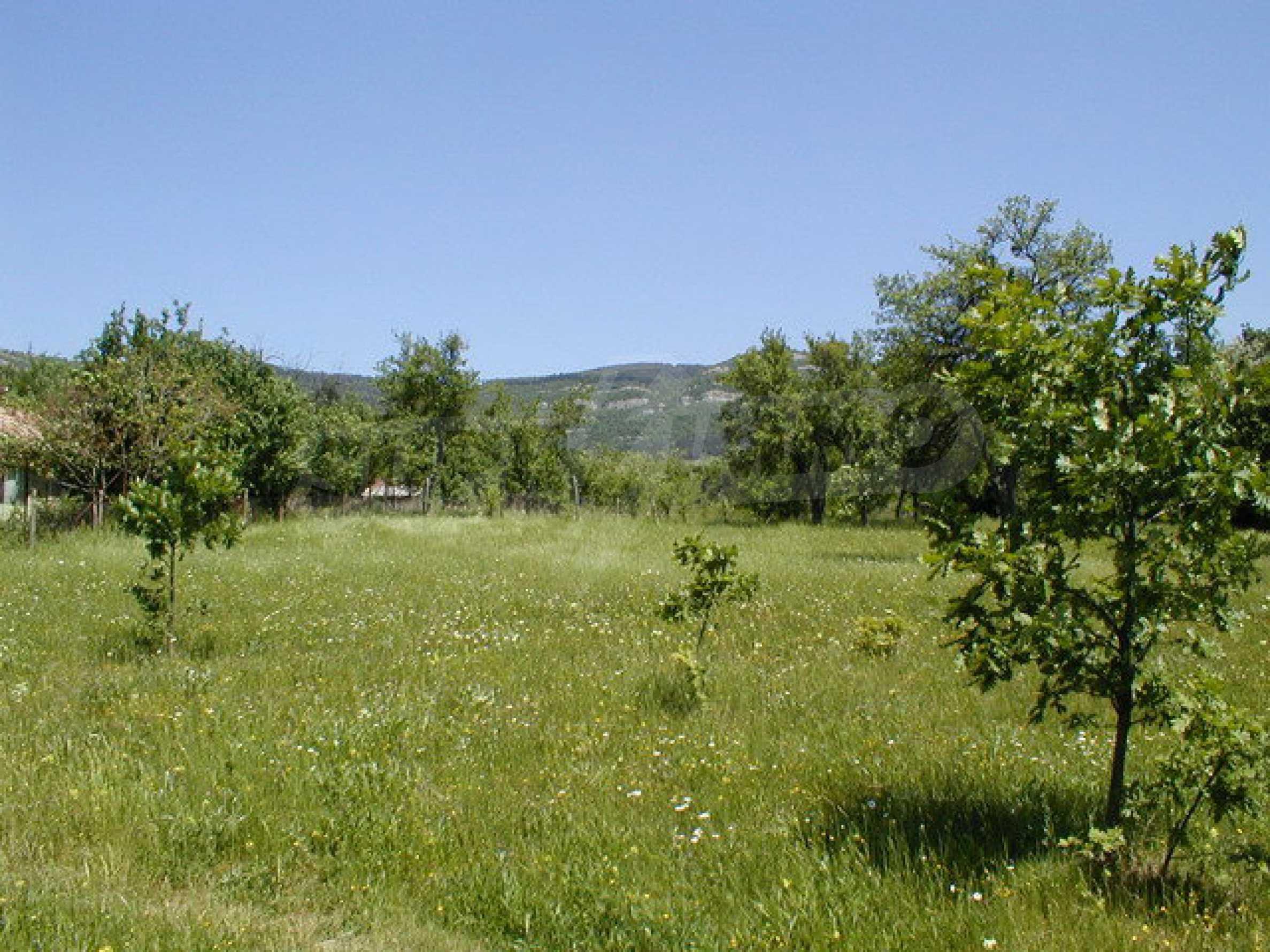 Geregeltes Grundstück in einem Dorf in der Nähe von Gabrovo 5
