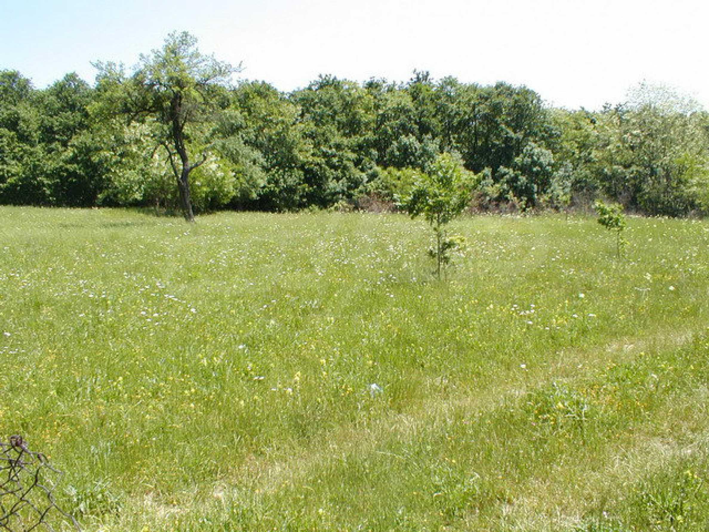 Geregeltes Grundstück in einem Dorf in der Nähe von Gabrovo 7
