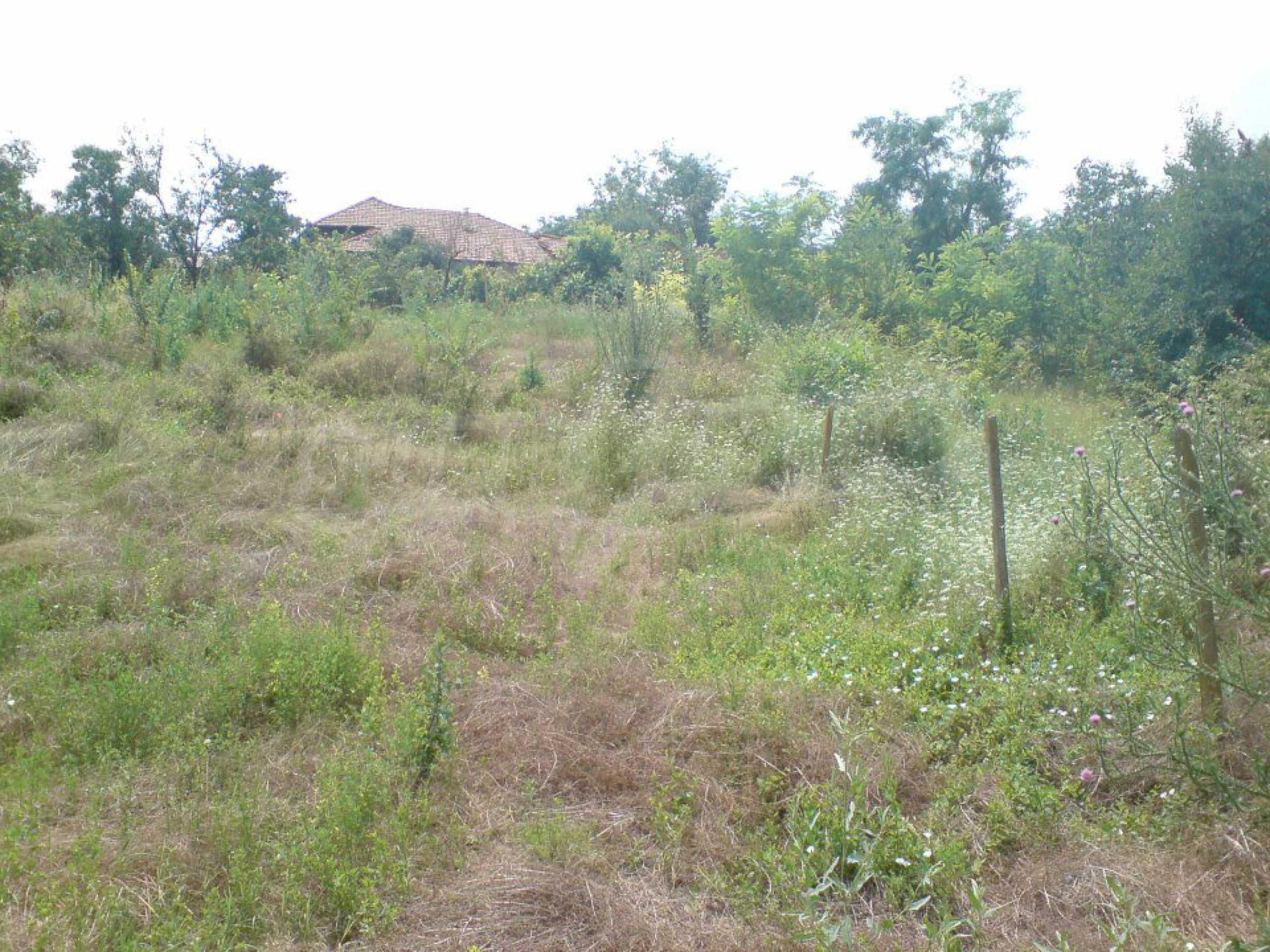 Massives einstöckiges Haus in einem Dorf 15 km. von Byala 8
