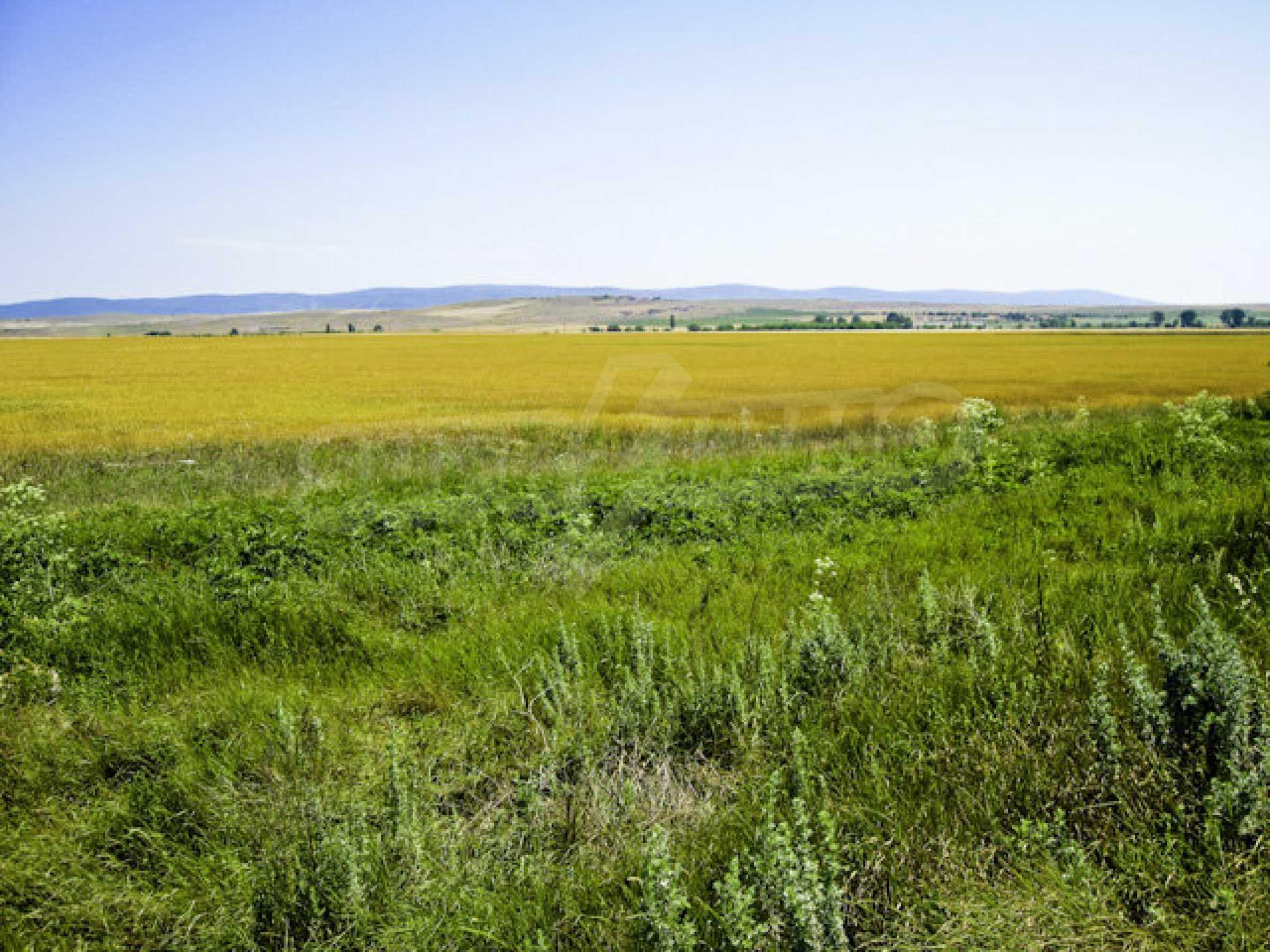 Geregeltes Grundstück in der Nähe des Badeortes Sonnenstrand 4