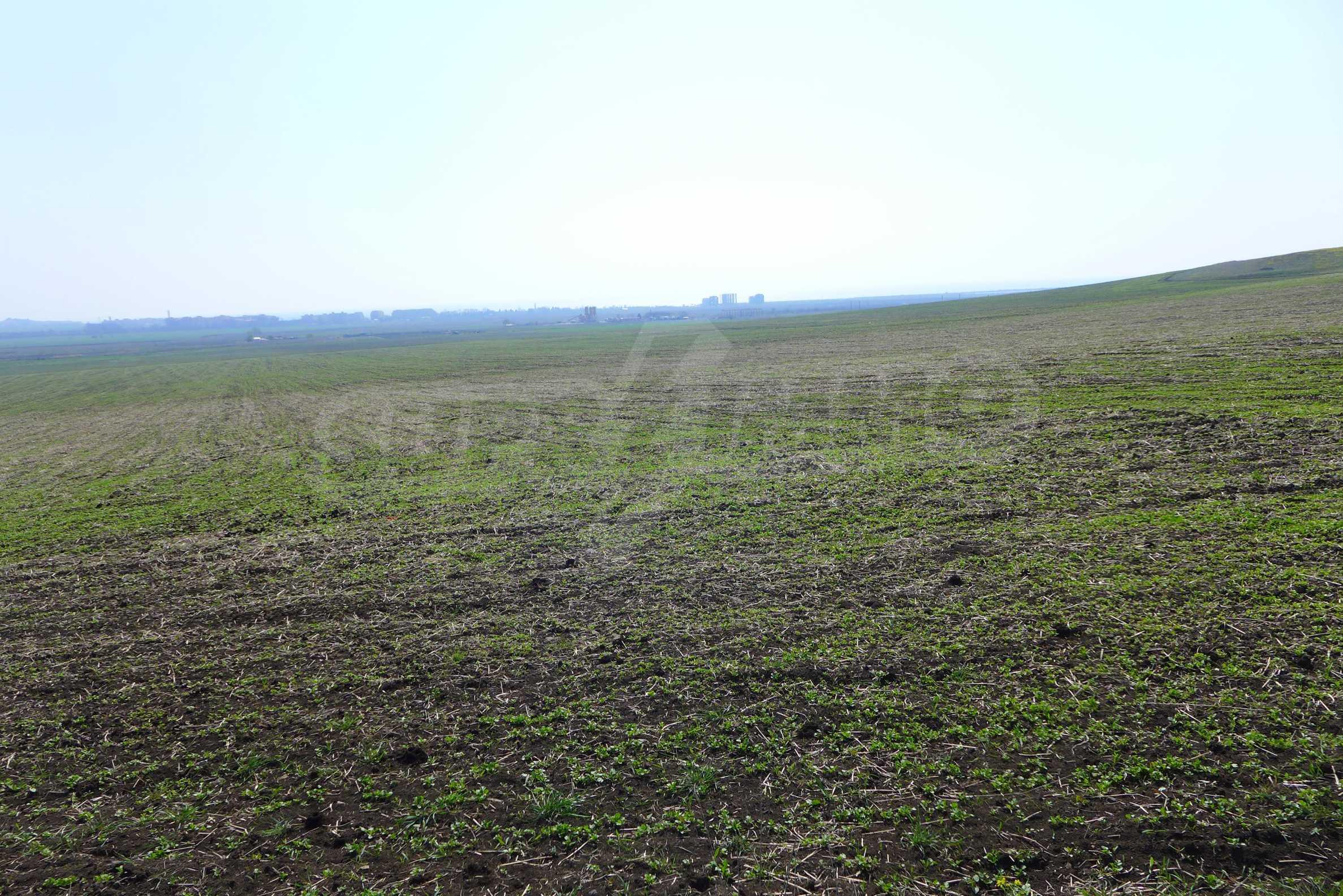 Ein geräumiges Grundstück, 8 km vom Sonnenstrand entfernt 6