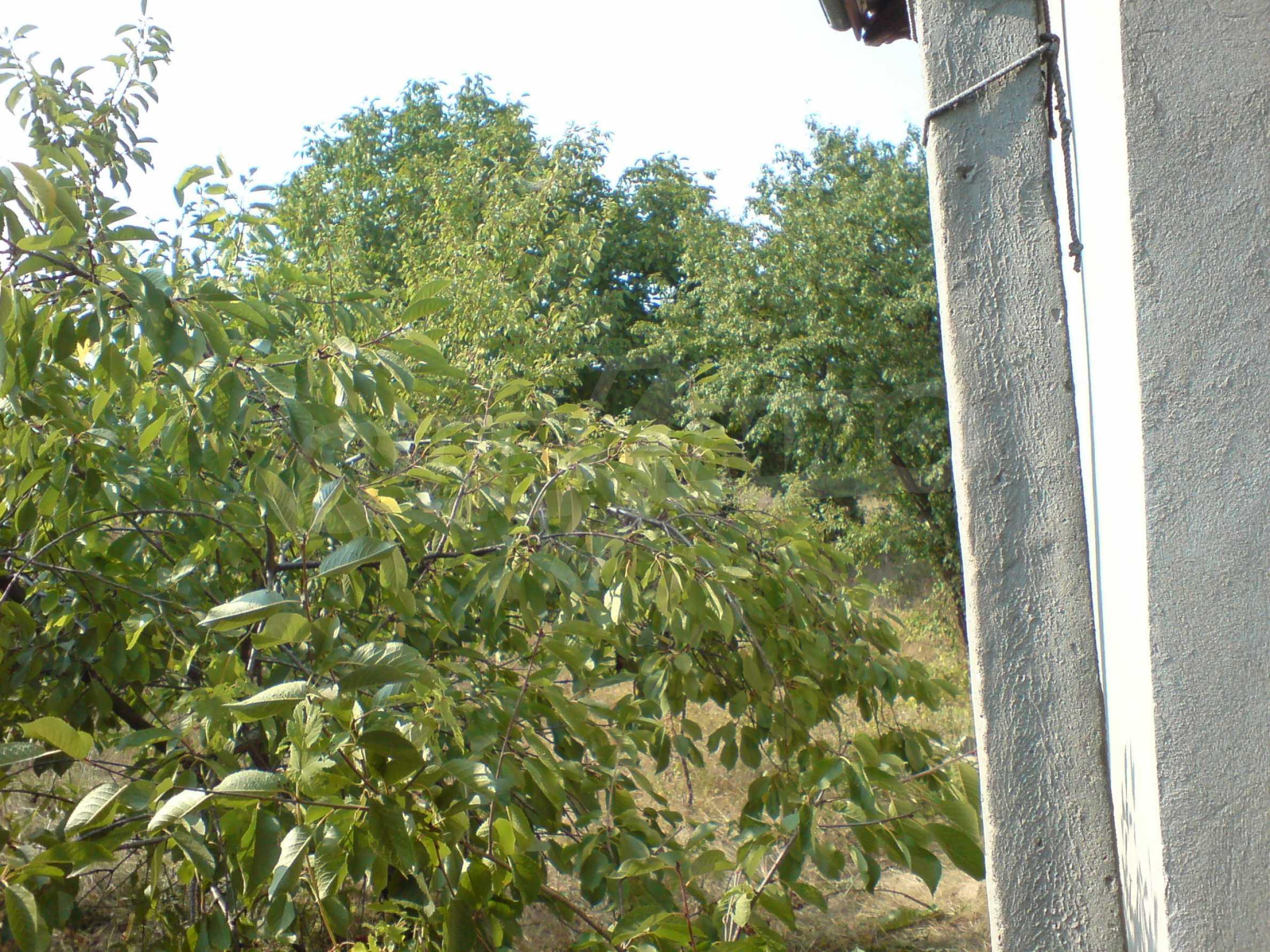 Rural house located just 40 km.from Veliko Tarnovo 9