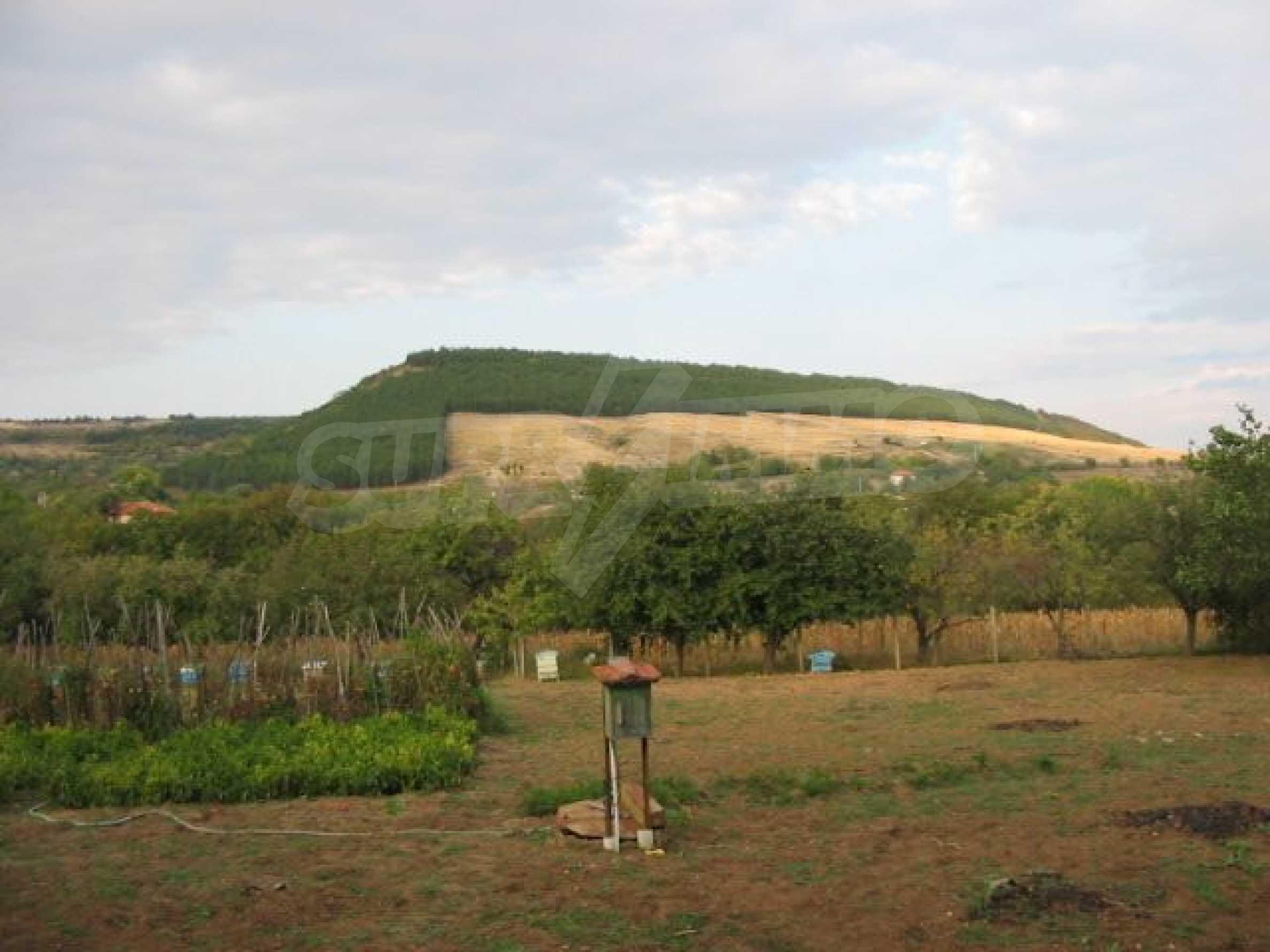 Селски имот с голям двор, на 30 км от Велико Търново 6