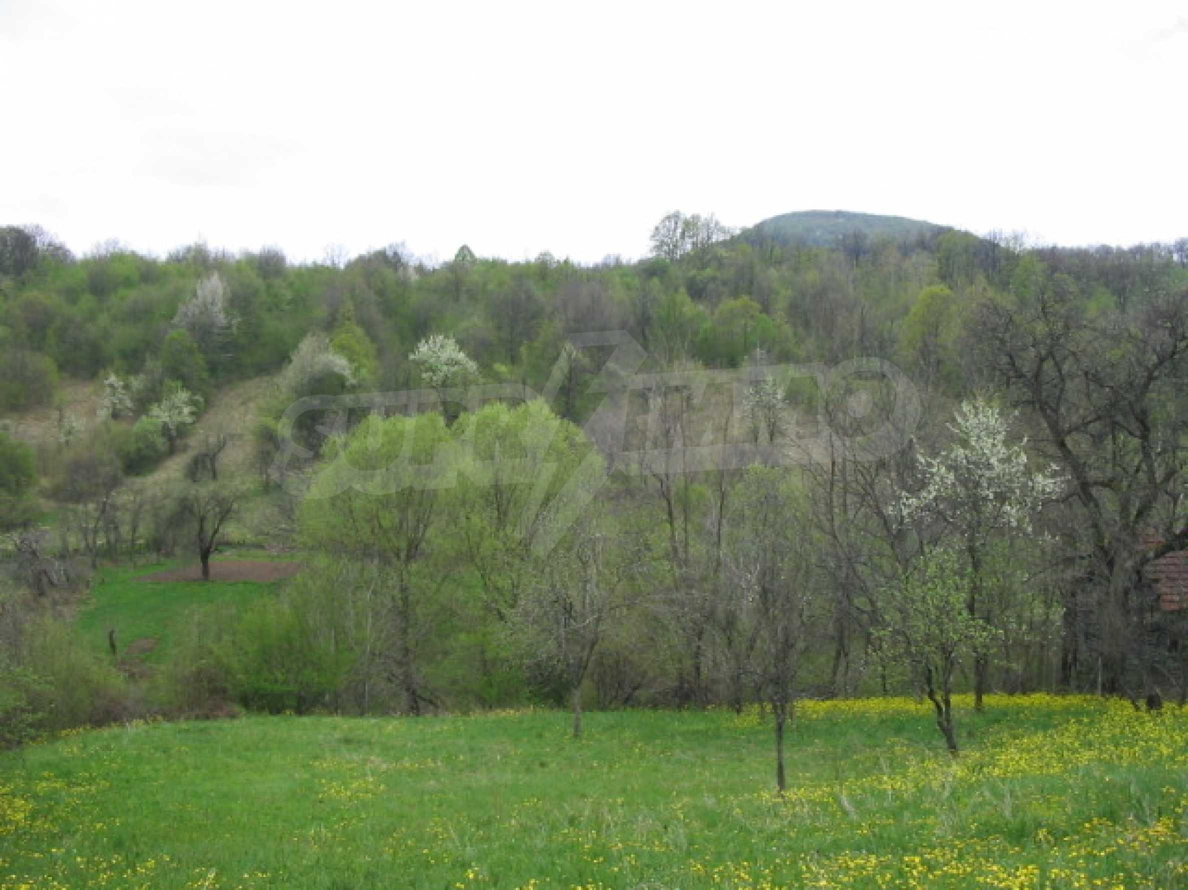 УПИ в село само на 20 км от Велико Търново  2