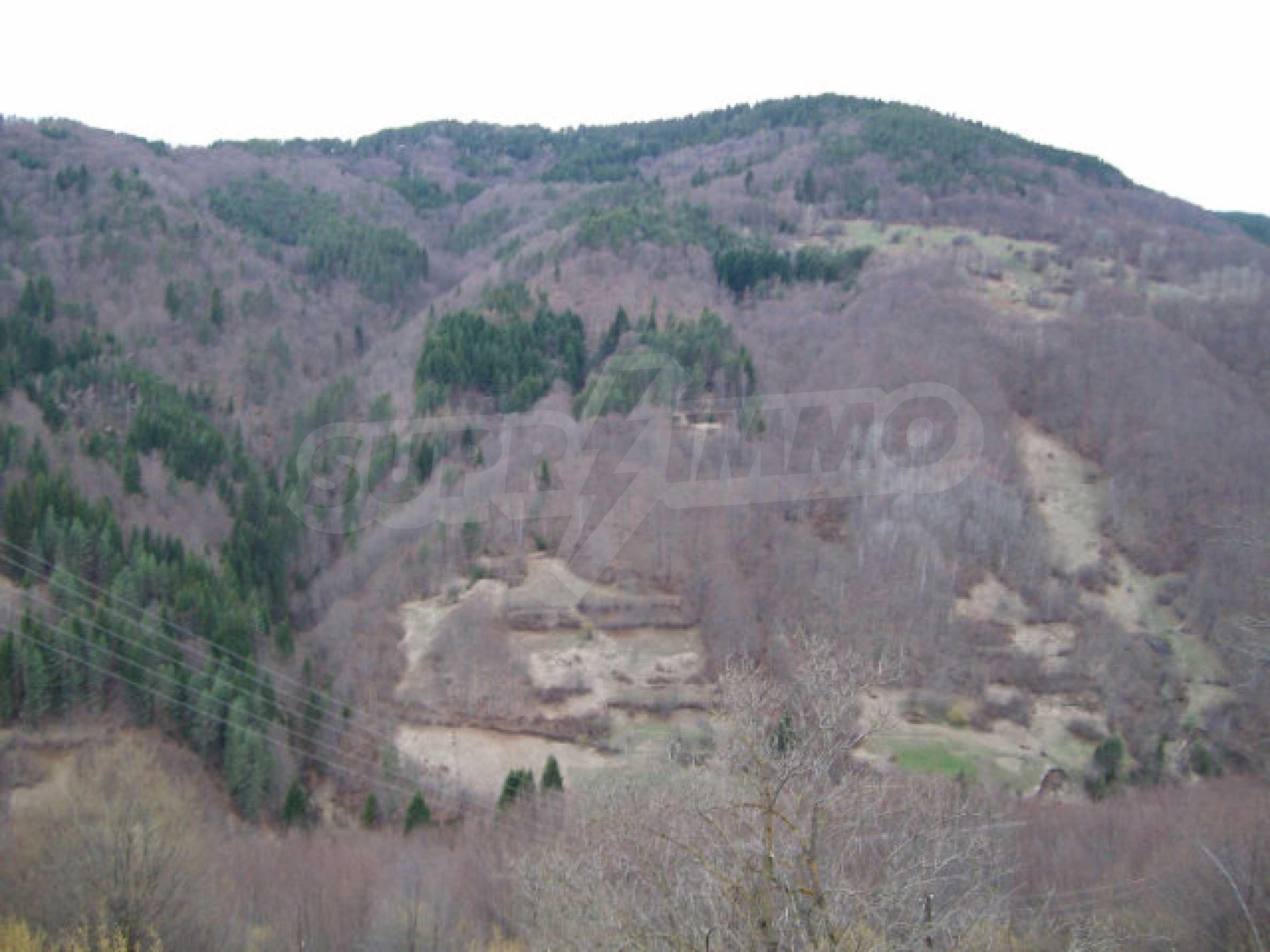 Villa near Smolyan 24